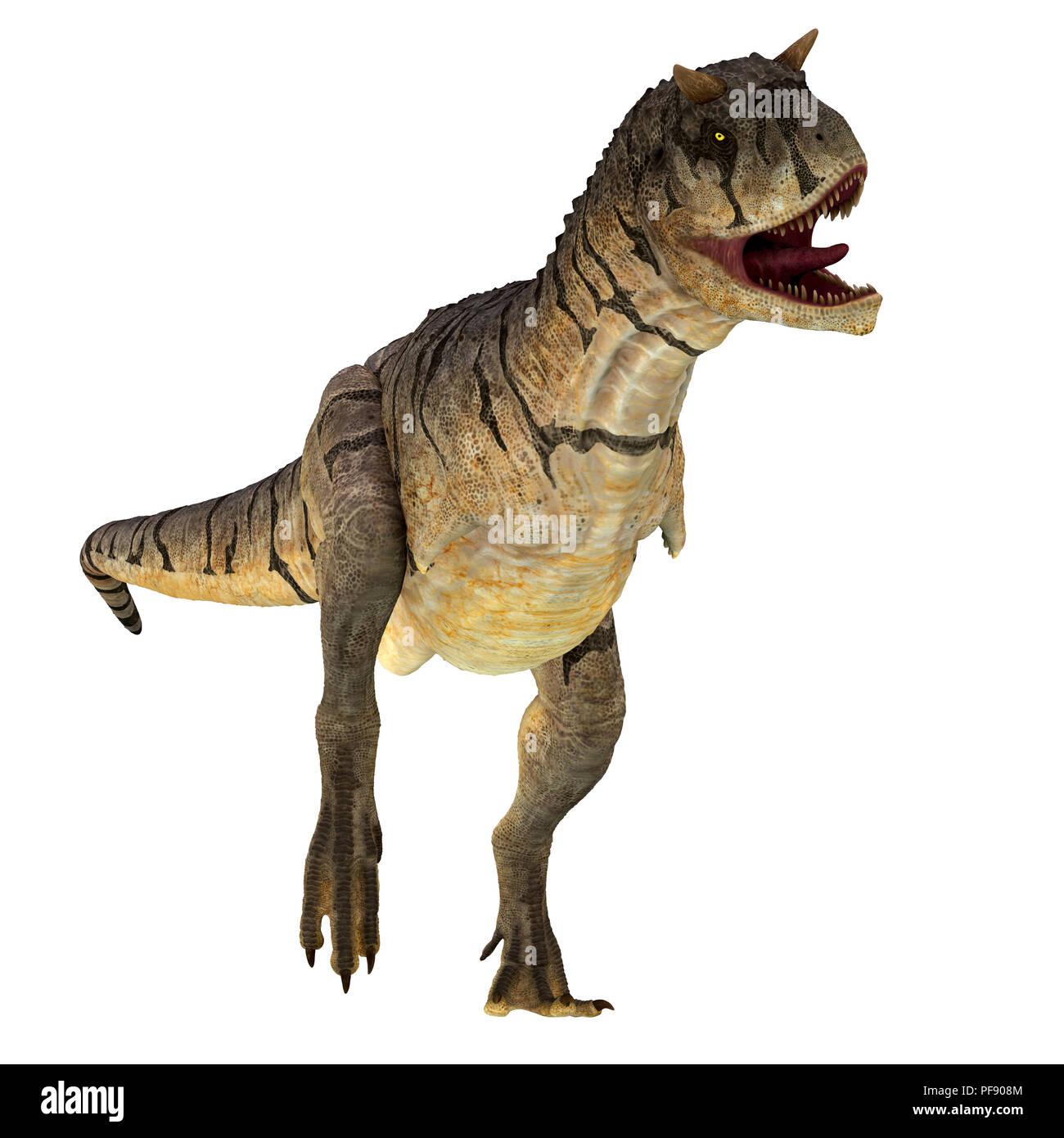 Carnotaurus sastrei Dinosaur - Carnotaurus was a carnivorous theropod dinosaur that lived in Patagonia, Argentina during the Cretaceous Period. - Stock Image