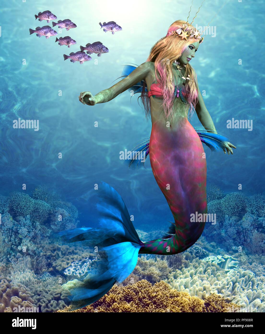 Coral Reef Mermaid - A school of Blue Rockfish swim along side of a beautiful mermaid as she glides along an ocean reef. - Stock Image