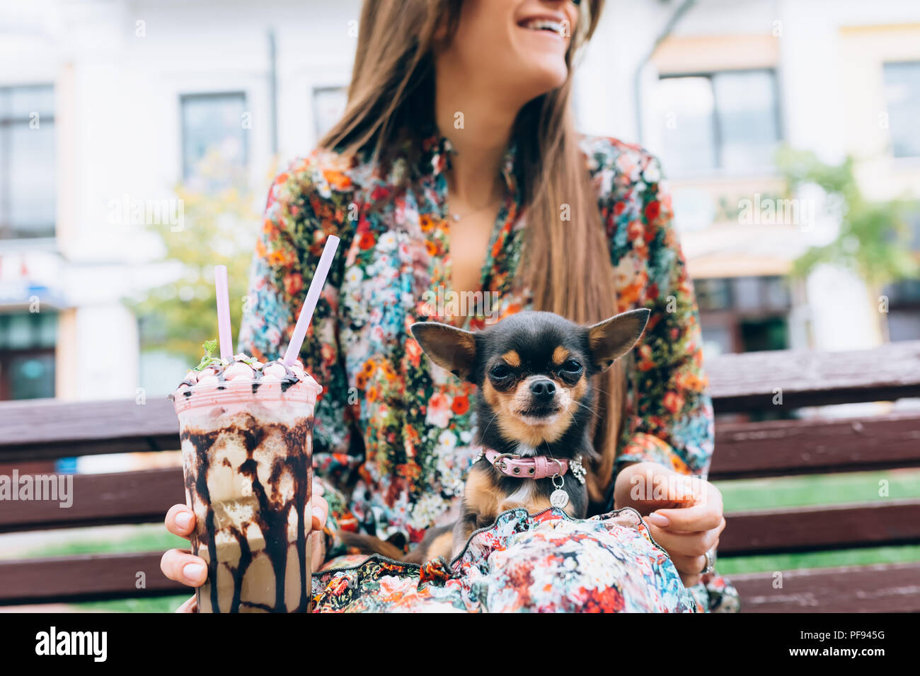 Young woman in sunglasses with little puppy. Outdoor lifestyle portrait of stylish pretty smiling female and her small dog. - Stock Image