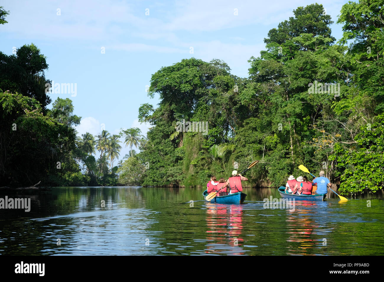 Canoe tour in tortugero - Stock Image