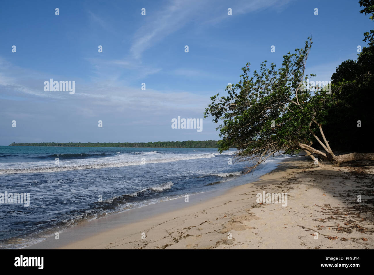 Nice and quiet beach at Cahuita National Park - Stock Image