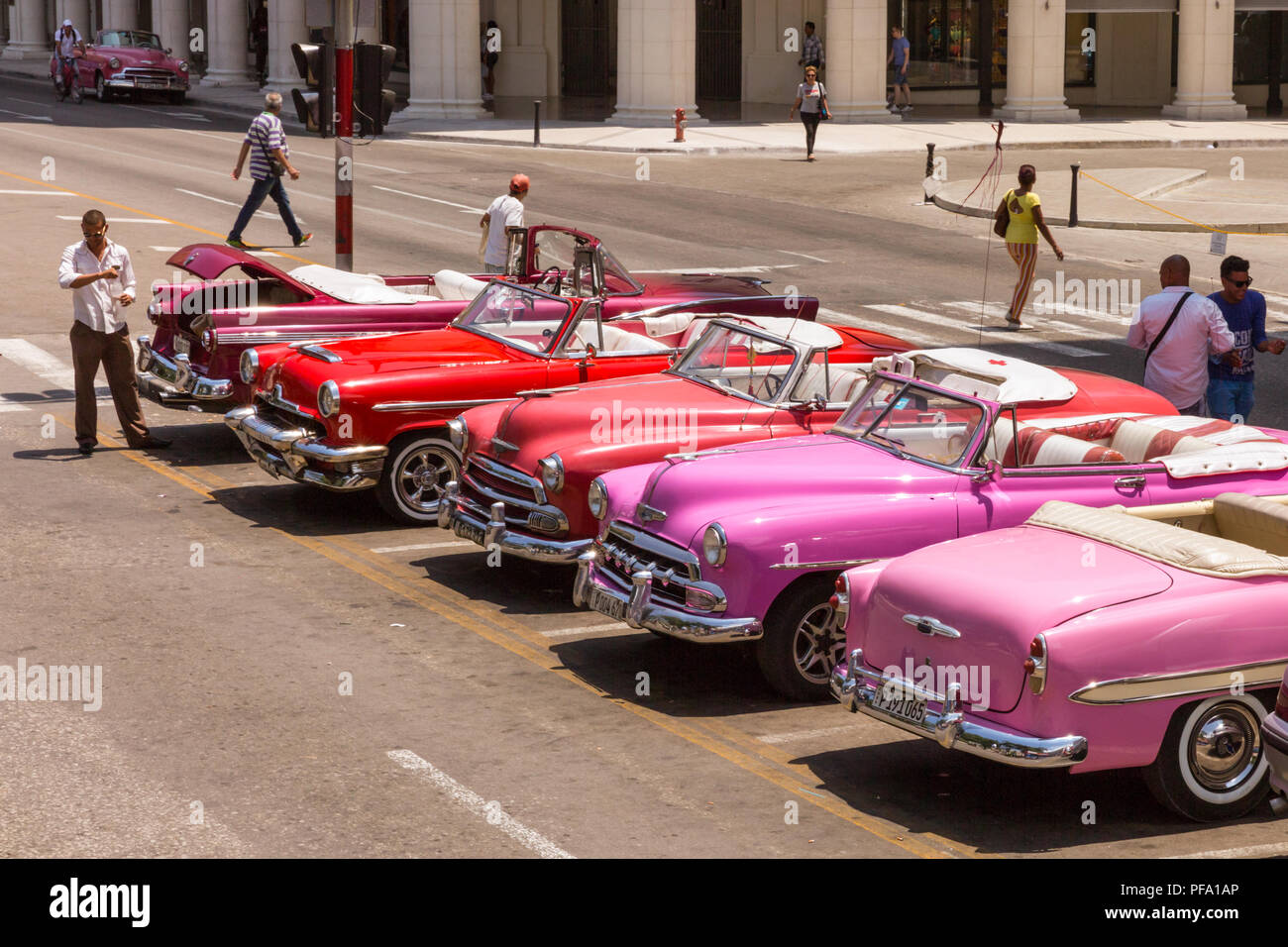 American classic cars and vintage oldtimers in pink, red and purple, lined up in Havana, Cuba - Stock Image