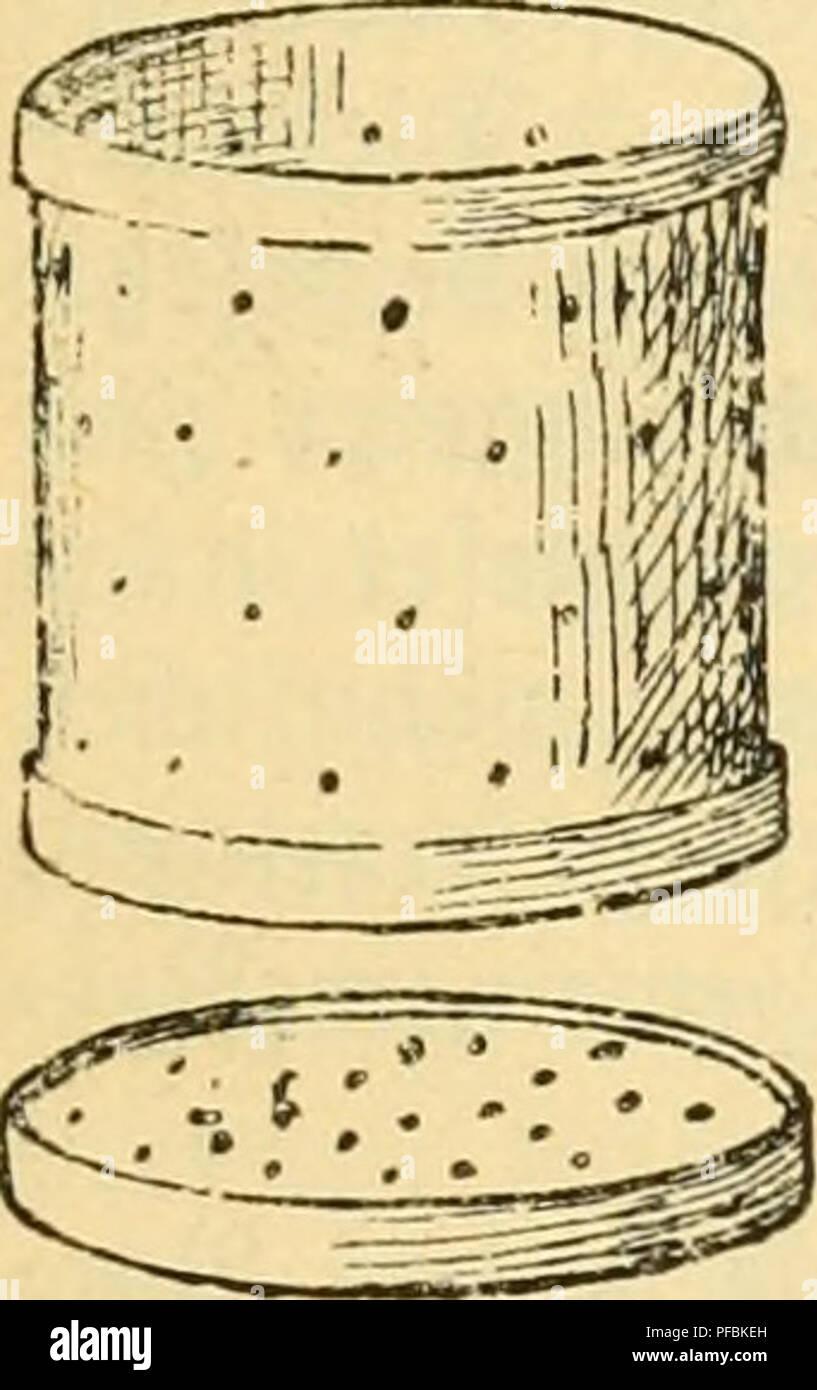 anleitung deep throat