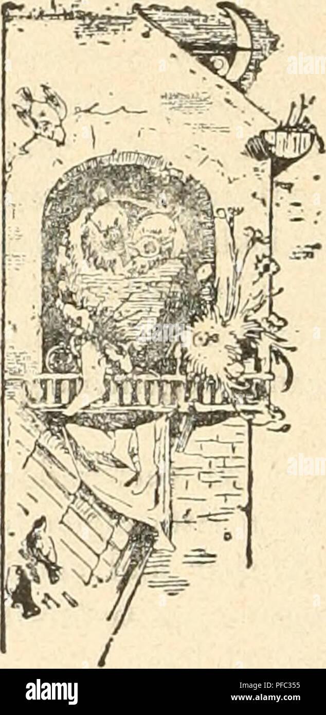 . Der Ornithologische Beobachter. Birds; Birds. - 264 - ein Lebenssaft ist, ohne den das Bestehen eines Lebewesens undenkbar wäre, so begreifen wir auch, dass die richtigen Funktionen der Lunge, des Herzens, die Magen- und Darmthätigkeit etc. unmöglich aufrecht erhalten w^erden können, wenn kein gesundes Blut durch die Adern kreist. Das Blut hat zunächst den Zweck, neue Nalirungsstoffe in die einzelnen Teile des Körpers zu bringen. Dmch das Hin- und Herfliegen, durch jede Bewegung, durch die Ausdehnung und Zusammenziehmig der Lunge beim Atmen, namentlich aber bei der Anstrengung beim Singen un Stock Photo