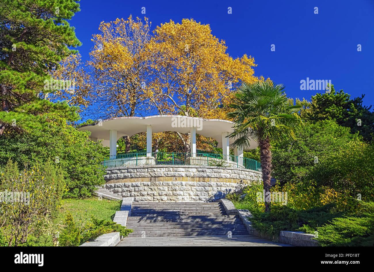 Sochi Arboretum is a museum of nature 19