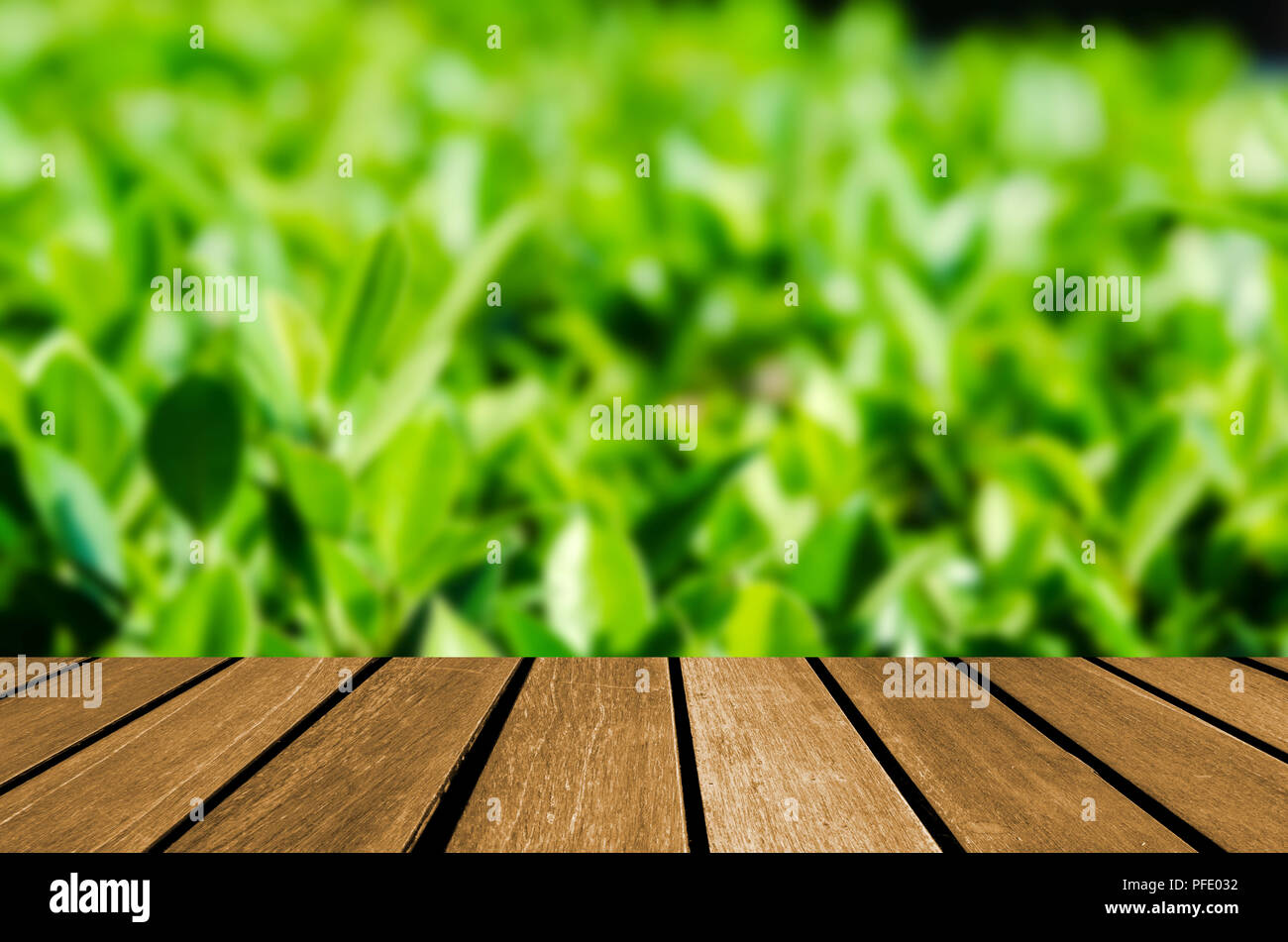 Wood Table Top And Abstract Blurred Nature Green Leaf