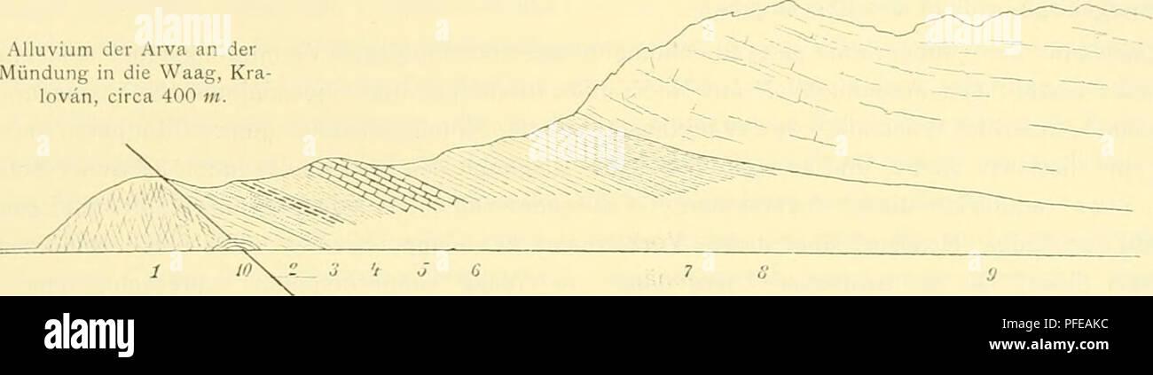 . Denkschriften der Kaiserlichen Akademie der Wissenschaften, Mathematisch-Naturwissenschaftliche Classe. Geologie des Fatrakriväii-Gcbii-ges. 547 Oberjura erkennen lässt. während die zu selhlichem Lehm verwitternden Schiefer unter dem Chocsdolomit jedenfalls dem Oberneocom mit Desnioc. liptavieuse angehören und die Unterlage für die flach liegende Chocsdolomitdecke des eigentlichen Sipberges abgeben (vgl. Textfig. 6). Fig. 6. w Sip, 1169»«. Alluvium der Arva an der Mündung in die Waag, Kra lovän, circa 400 m.. 1. Granit, geklüftet, an der Dislocations- linie mit undeutlicher Parallelstructur. Stock Photo