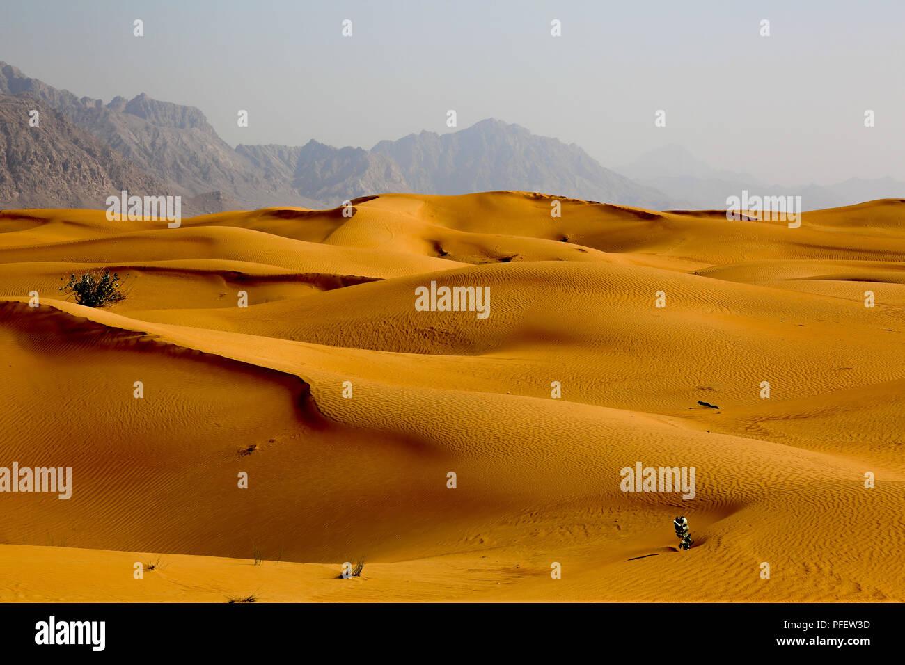 Contrasting Desert Landscapes - Stock Image