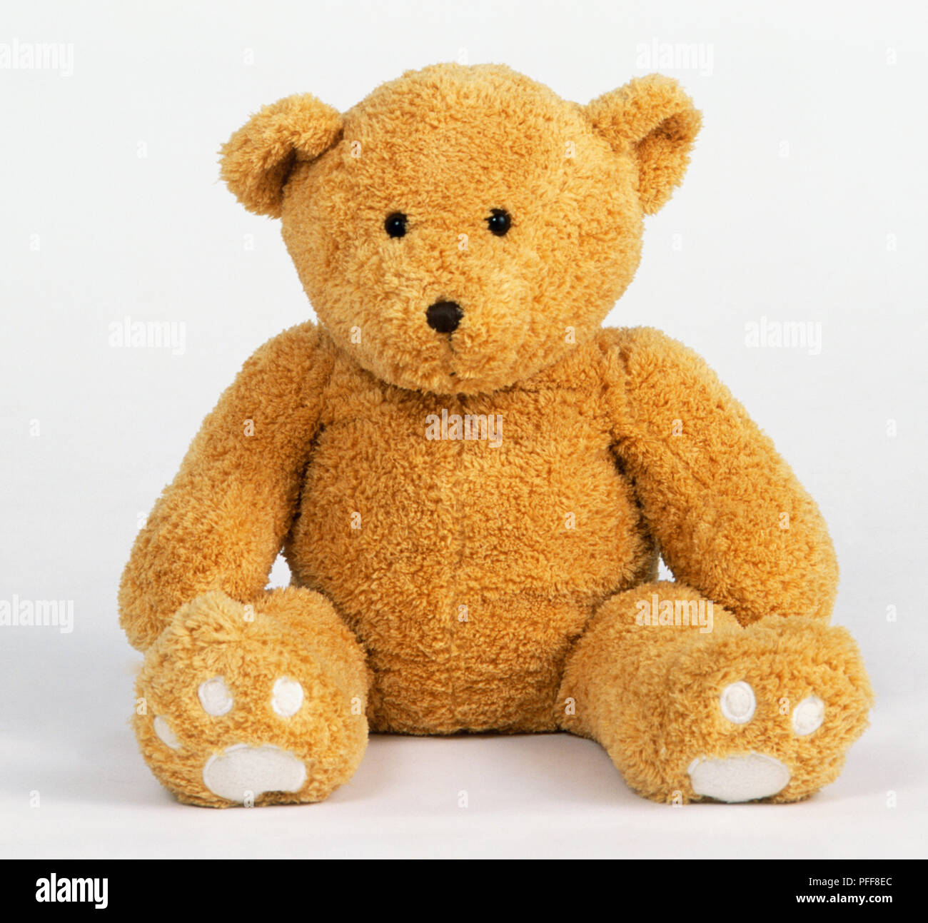 Sitting Yellow Teddy Bear Front View Stock Photo Alamy Traffic estimate for bearfront.com is about 910 unique visits and 7,553 page views per day. alamy