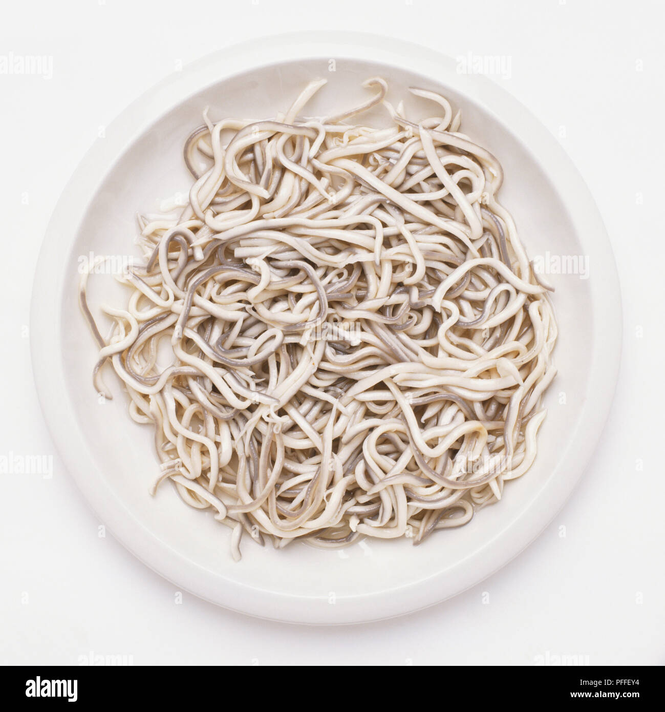 Plate of agulas, or elvers, close up Stock Photo