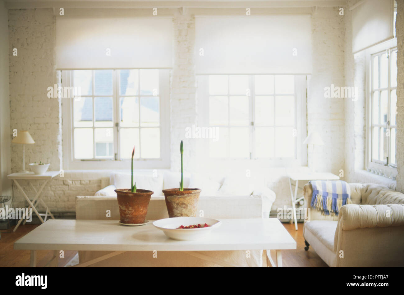 Converted warehouse interior with white-washed brick walls, enormous windows with blinds, simply furnished with white settees and coffee table with plants and pot-pourri. - Stock Image