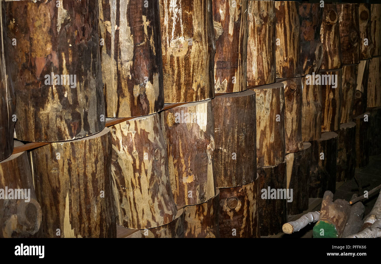 Row of wood stumps, stacked to dry, on wood factory stockpile. Selective focus. - Stock Image