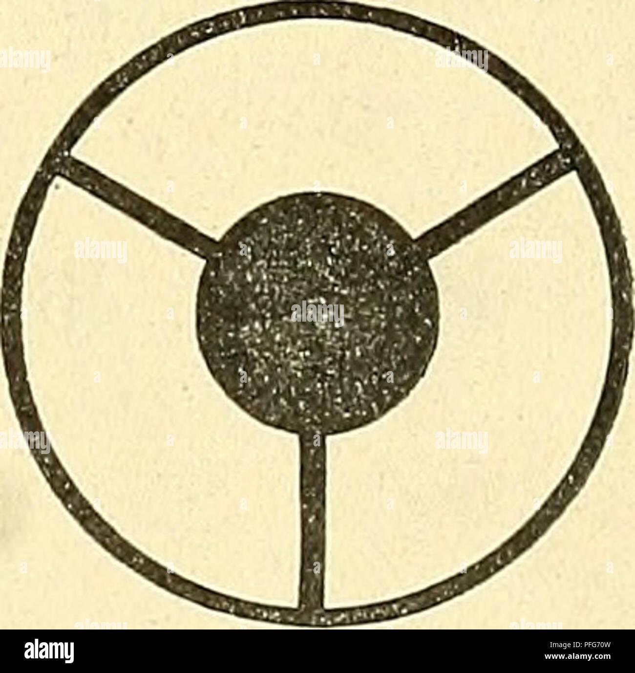 . Das Mikroskop. Ein Leitfaden der wissenschaftlichen Mikroskopie. Microscopy; Microscopes. 97 4. Die Dunkelfeldbeleuchtung. § 139. Bei der sogenannten Dunkelfeldbeleuchtung erscheinen die im Präparat befindlichen Objecte hell auf dunklem Grunde, was z. B. bei der Auffindung und Verfolgung kleiner Organismen oder dergl. viel- fach von Vortheil sein kann. Ferner kann die Dunkelfeldbeleuchtung auch bei der Mikrophotographie in manchen Fällen gute Dienste leisten. Das Princip der Dunkelfeldbeleuchtung beruht darauf, dass alle Strahlen, die von dem betreffenden Objective aufgenommen werden, durch  - Stock Image