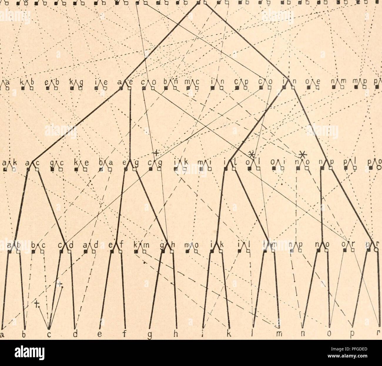 """. Das werden der organismen zur widerlegung von Darwins zufallstheorie durch das gesetz in der entwicklung. Evolution; Life. Das bei geschlechtlicher Zeugung entstehende genealogische Netzwerk. 24^ Verhältnisse, die durch die geschlechtlichen Verbindungen, durch die aus ihnen entstehenden Kinder und durch die von diesen wieder- um neu eingegangenen Ehen in einer Bevölkerung geschaffen werden. Bei der Stammtafel müÃten auch die weiblichen Linien '^â n 'j^ir^ '/i '/i ^/^ H 20 /^ w 'A w,.^-^,sa; 6^,â4r^ ' r^"""")^ '/i )M H 1? 'â â :â """"â â . â â â¢.â ⢠'. : OJ^ n^m n^ p^ 16 15 P 16. Fi Stock Photo"""