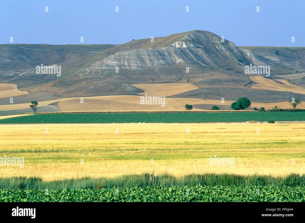 Spain, Castilla y Leon, Palencia Province, Tierra de Campos, fields backed by hills - Stock Image