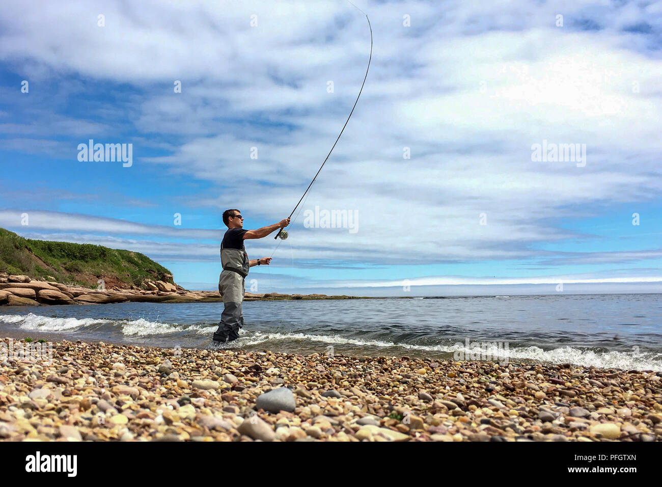 Saltwater fly fishing for Striped bass on Quebec's Gaspe Peninsula, Canada - Stock Image