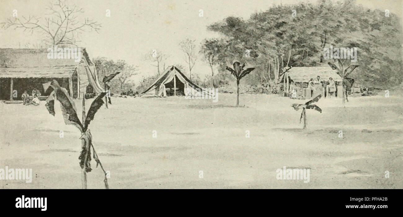 . Dans la grande forêt de l'Afrique centrale. Mon voyage au Congo et à la Mongala en 1896. Botany. 6 Chapitre Premier Jusqu'à la rivière ïnkissi, large de 100 mètres, la région conserve le caractère qu'elle a le long <lu chemin de fer : sol argileux, savane parsemée d'arbres rabougris, peu de forêts et peu de villages. Mais de l'autre côté du Meuve, le sol est sablonneux et la forêt couvre une plus grande partie du terrain; les villages y sont aussi plus nombreux. (V. pi. 2 à 10.) En allant, je pris la route qui passe par Luvituku. Ce chemin monte et descend. » CAMPEMENT SUR LA  Stock Photo
