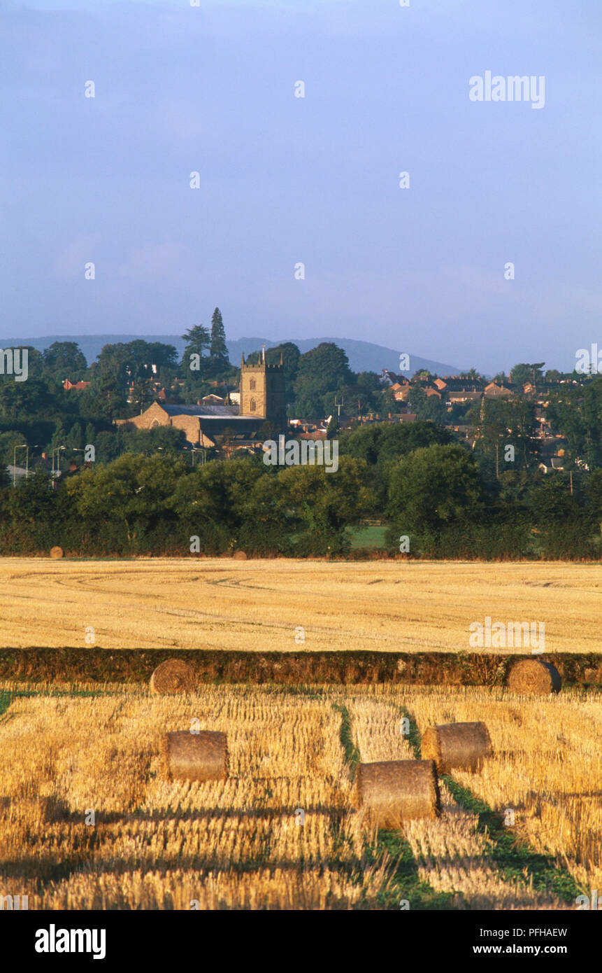 Great Britain, England, Herefordshire, Leominster, fields with bales of hay and town with church tower set amid rolling border country. - Stock Image