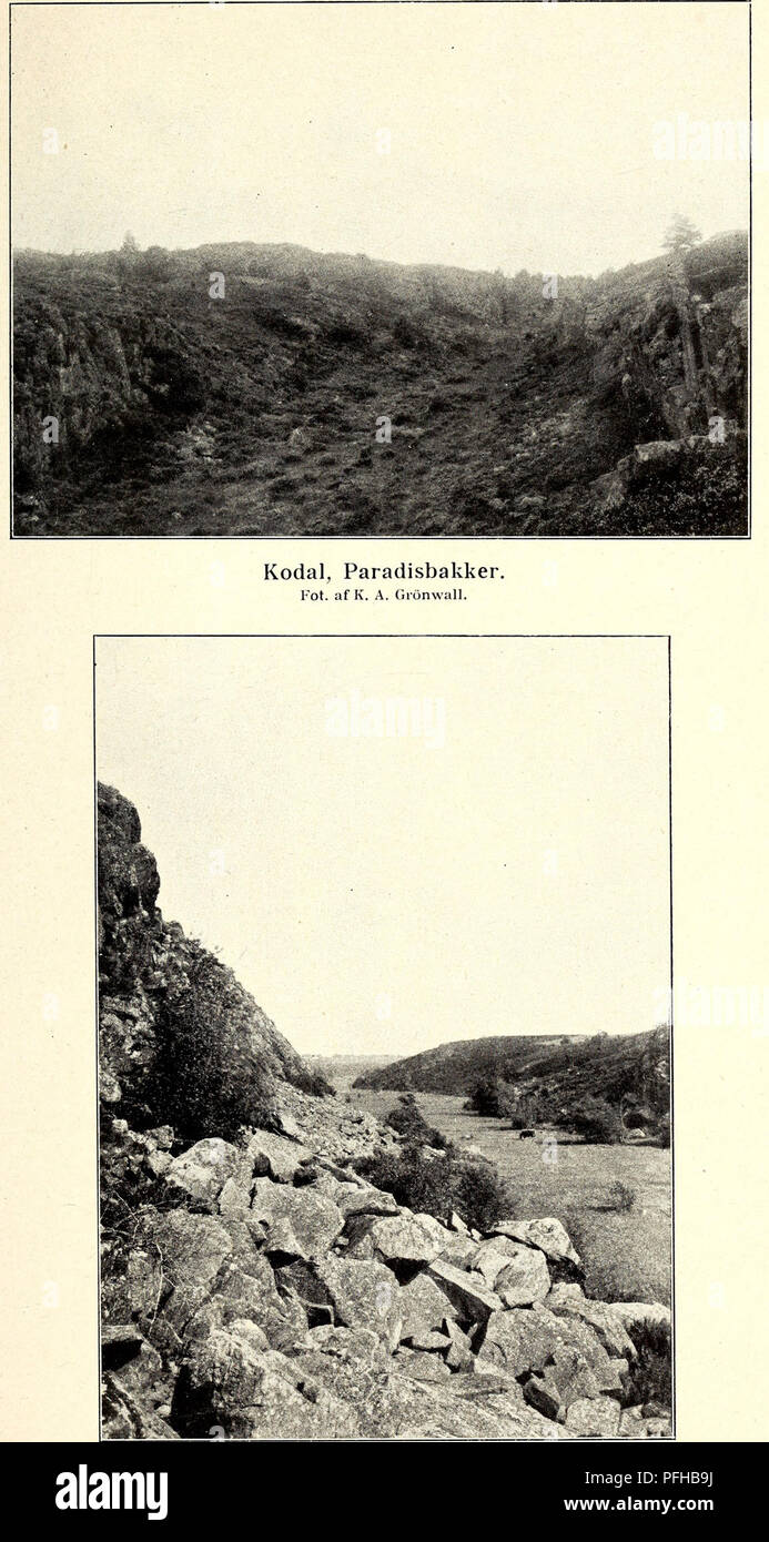 . Danmarks geologiske undersøgelse. Geology. D. G. U. I R. Nr. 13. Tavle XXII.. Talusdannelser, Kløven Syd for Spæling Mose. Fot. af V. Milthers.. Please note that these images are extracted from scanned page images that may have been digitally enhanced for readability - coloration and appearance of these illustrations may not perfectly resemble the original work.. Danmarks geologiske undersøgelse. København : C. A. Reitzels - Stock Image