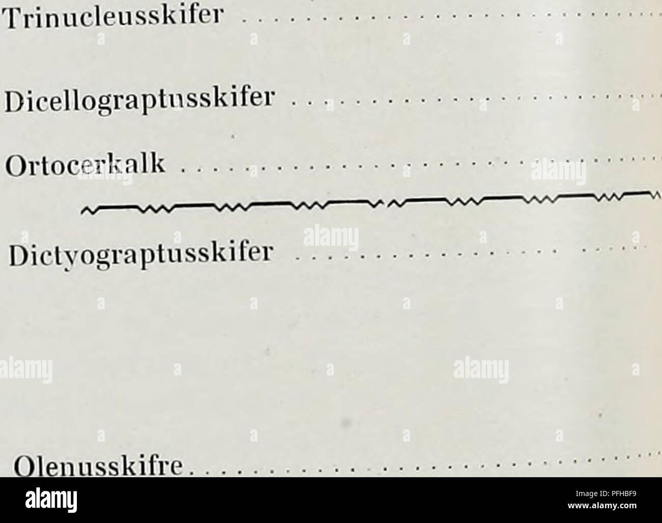 . Danmarks geologiske undersøgelse. Geology. Oversigt over Bornholms Sil Lagrækken ikke blottet. Lagrækken ikke tilstrækkelig blottet. Lakune. Lagrækken ikke tilstrækkelig blottet. Lakune. Cyrtograptusskifer Rastritesskifer. Paradoxidesskil're Grønne Skifre . Nexø Sandsten rrienlignet med Skaanes. med Monogr. Riecartønensis _ Cyrtogr. Murchizoni. . — Lapworthi. . _ Monogr. 9 Spiralis — Cyrtogr. Grayiæ one med Monogr. runcinatus . . Sedgivicki — Cephalogr. cometa — Petalogr. folium — Monogr. triangulatus . — — cyphus - Diplogr. acuminatus . . lie med Stauroeephalus clauifrons — Ampyx Porllocki  - Stock Image