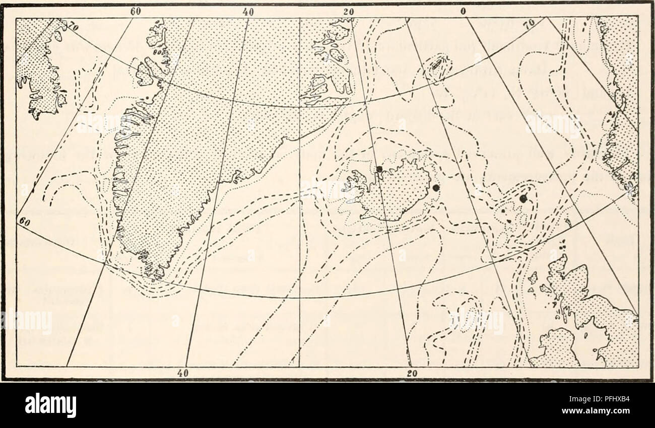 . The Danish Ingolf-Expedition. Scientific expeditions; Arctic Ocean. HYDROIDA 33 layers, as is seen (Text-fig. H) from the finds to the north east of the Faroe Islands and on the south east coast of Iceland (Broch 1903). As new localities must be added Northern Iceland (0fjord). On the other hand, the specimens from Davis Strait, recorded by Levinsen (1893) as Amallhaea islandica, prove to belong to Corymorpha groenlandica (Allman). Corymorpha groenlandica (Allman) Broch. 1876. Monocaulus groenlandica, Allman, Diagnoses Jof new Genera and Species of Hydroida, p. 257, PI. IX, Fig. 7—8. 1893. A Stock Photo