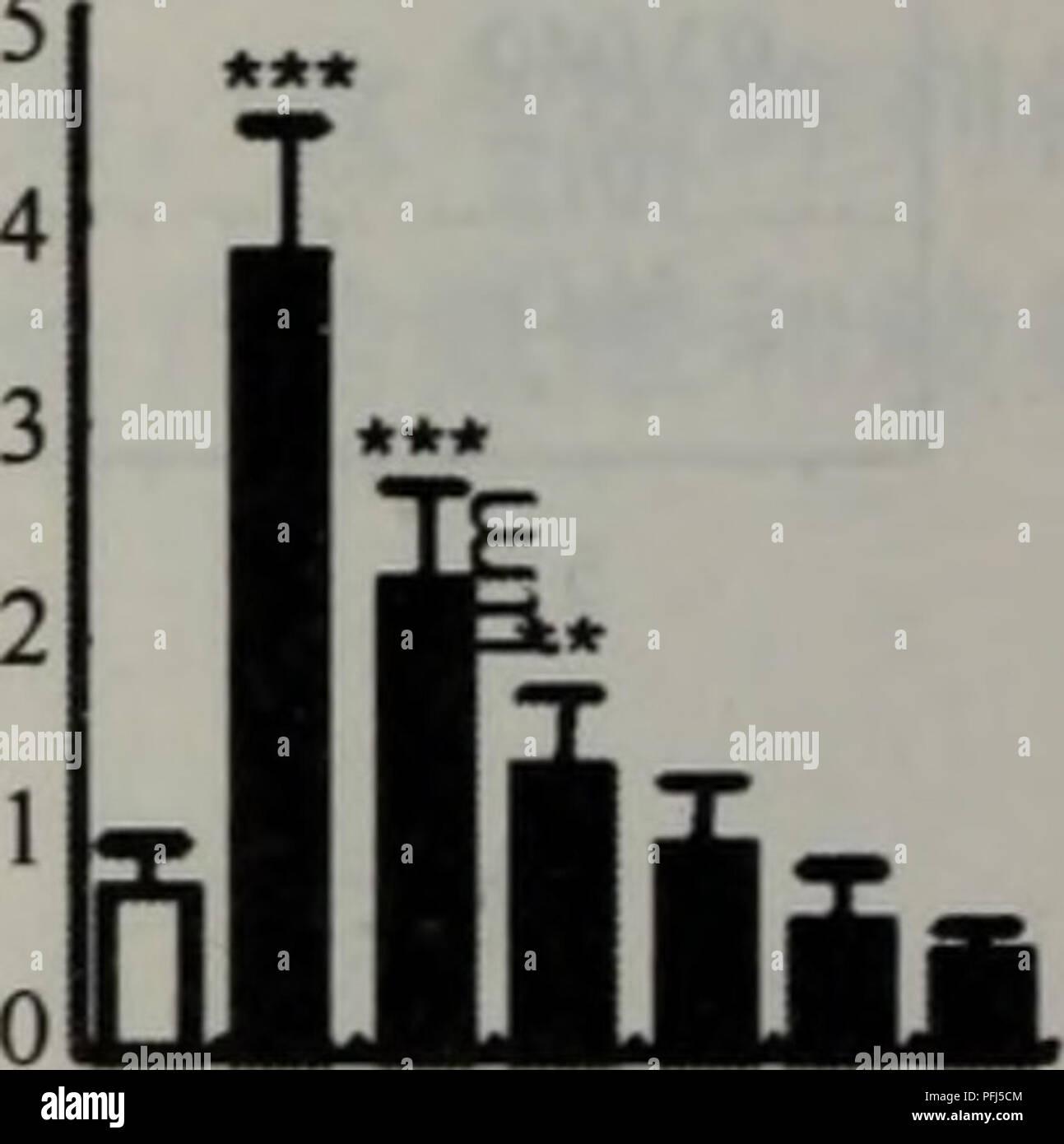スーパーコピー 時計 ロレックス オメガ - スーパーコピー 時計 ガガ 14日