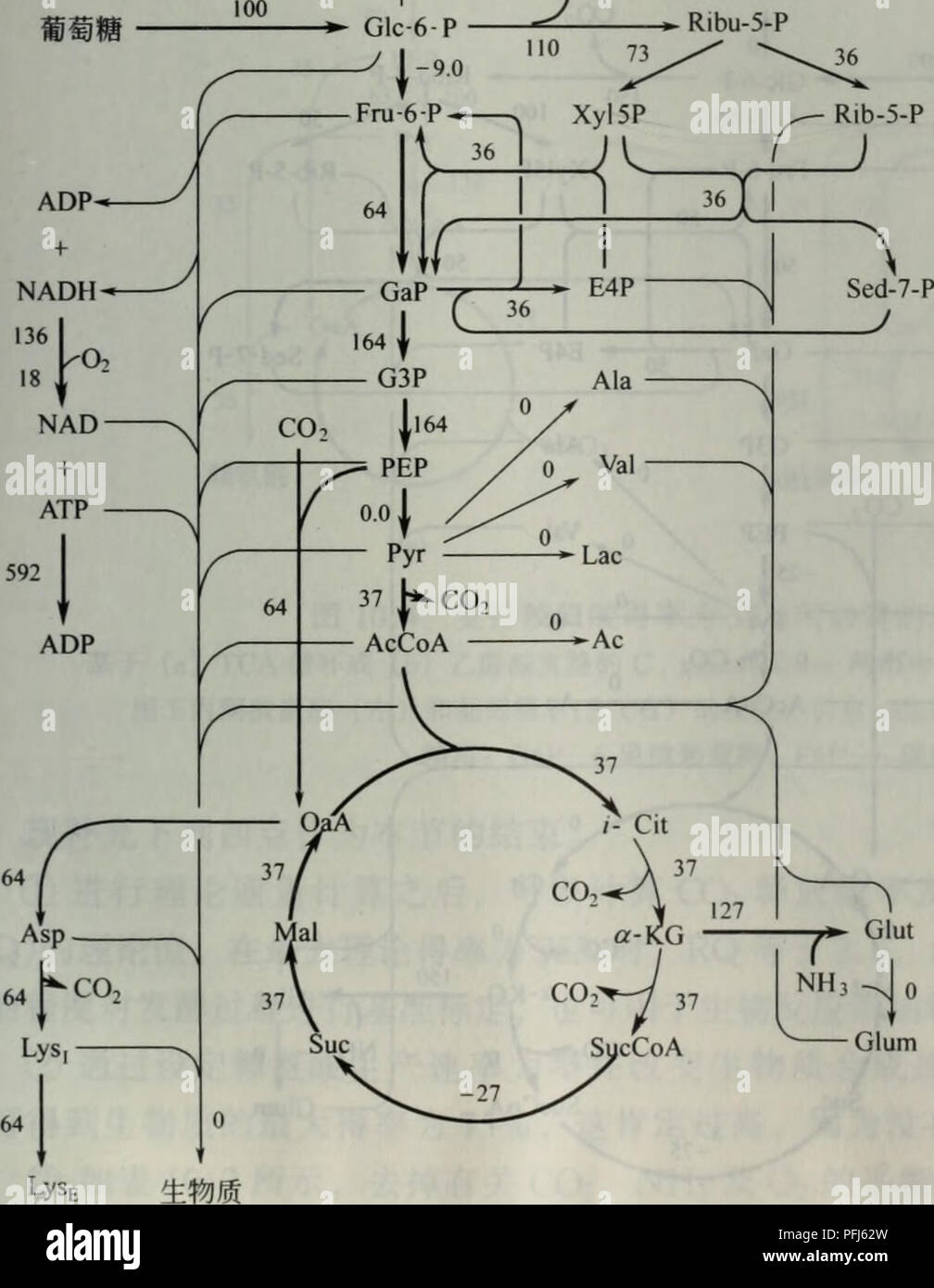 2 8i Stock Photos & 2 8i Stock Images - Alamy A Schematic Diagram Cht on