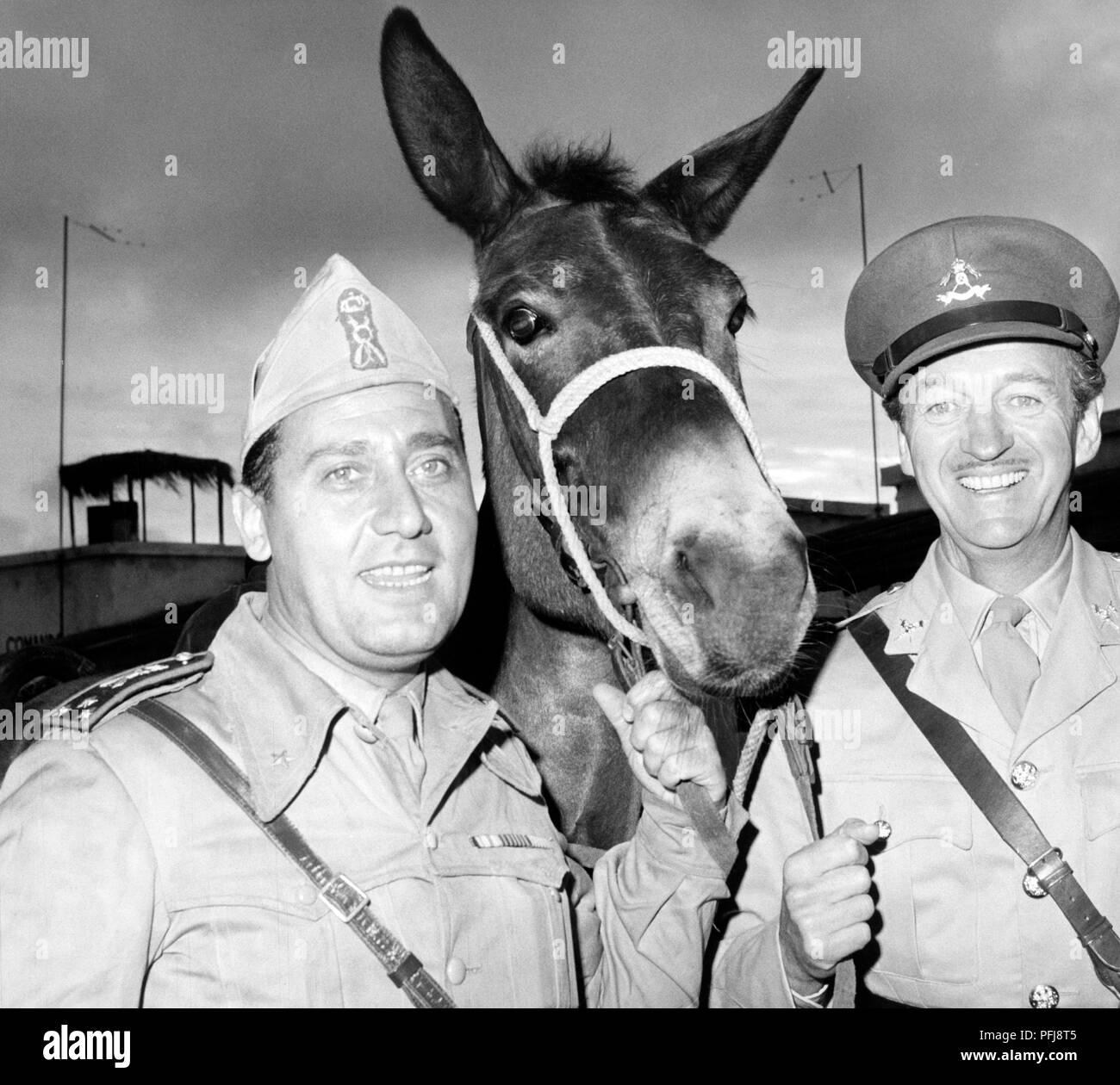 david niven, alberto sordi, in the best of enemies, 1961 Stock Photo