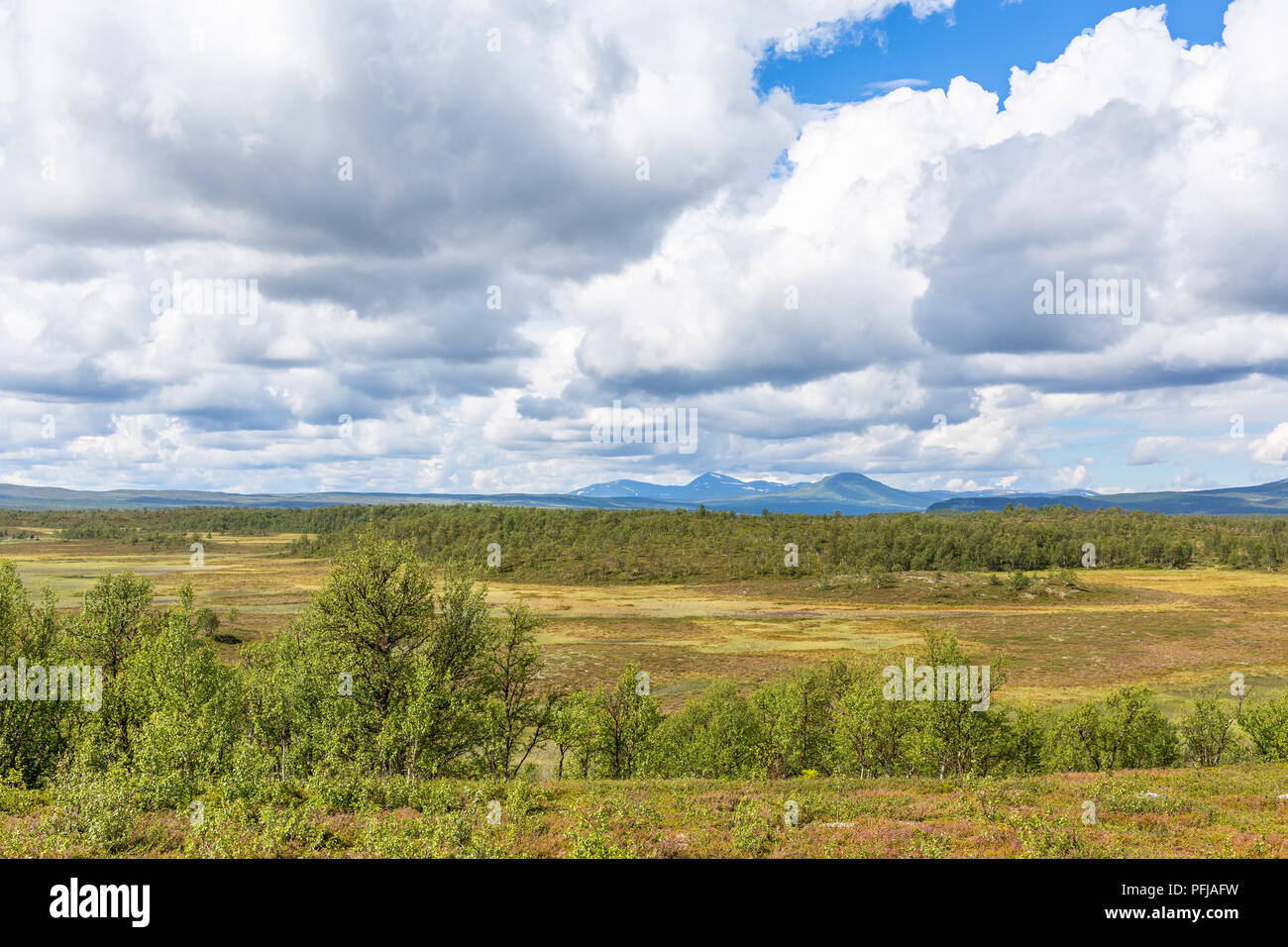 High country moorland plateau in the wilderness with mountains in the backgrounds - Stock Image
