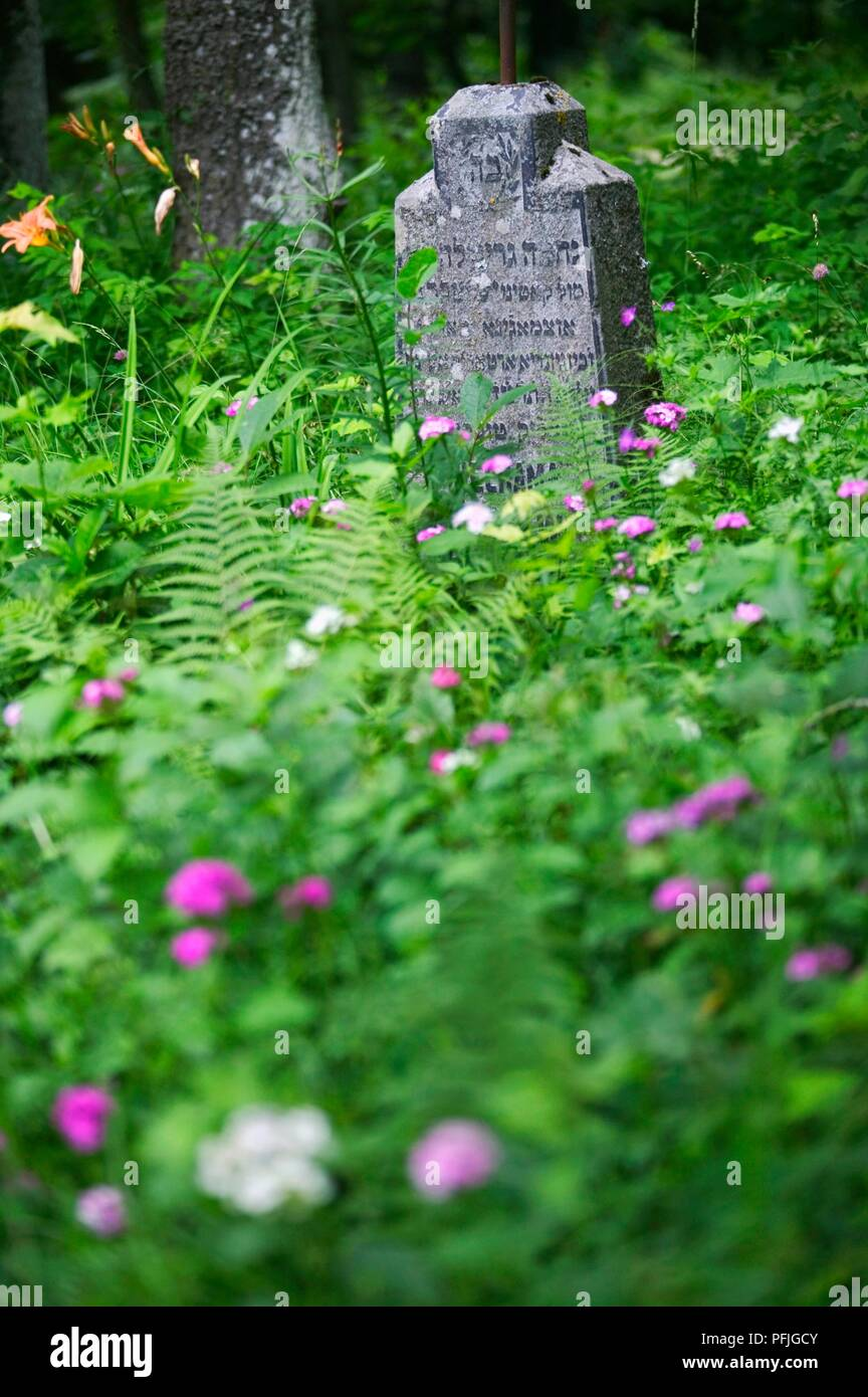 Lithuania, Trakai, Karaim Cemetery, gravestone with Hebrew lettering surrounded by wildflowers and ferns - Stock Image