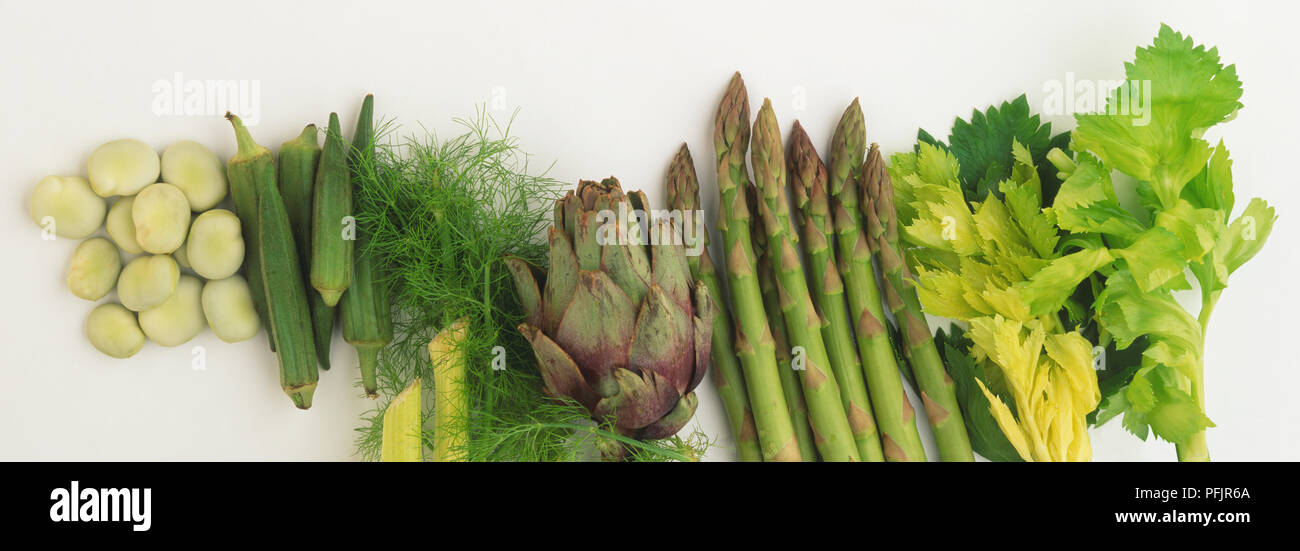 Selection of vegetables including broad beans, okra, fennel, artichoke, asparagus and celery Stock Photo