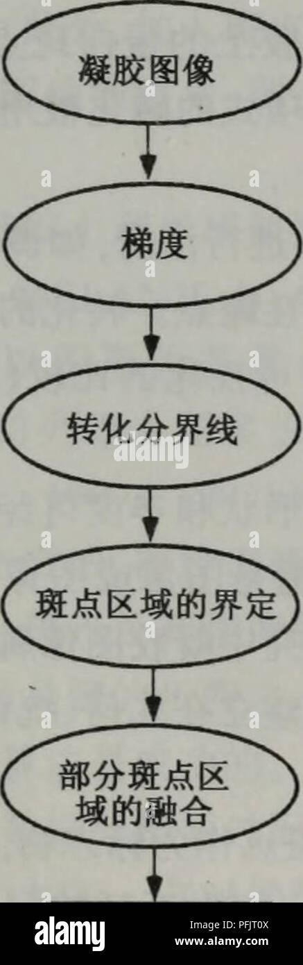 . dan bai zhi zu xue cong xu lie dao gong neng. botany. 第å -ç« äºç»´åè¶çµæ³³çå¾ååæ 111 å³äºæ©å¤§æç¹ä¸-å¿å ææåç´ çå å¯åº¦ä¹åã å ¶ä»è¿è¡æç¹æ£æµçæ¹æ³åºäºè½¬ååç线ï¼Watershed transformation, WST) (Bettens et al., 1997ï¼ Meyer and Beucher, 1990; Pleissner et al., 1999; Vincent, 1993; Wegner et al. ã 1998)ãå°åæ°´å²-è¿ä¸å°çå-¦çåçåºç¨äºå¾åï¼ç°åº¦å¾ç被认为æ¯æææ ·å°è²ï¼ ç±æ°å¼ä»£è¡¨çæä¸ç¹çåé«ãå¨è®¡ç®ç®æ³ä¸-ï¼æ们ç解éæ¯ä¸ç§æµ¸å ¥è¿ç¨ãè¿å¯ä»¥åè®¾ 为å¨å°è²çæ¯ä¸ªæå°åºåè¿è¡é»å-ï¼å¹¶ä¸å°è¡¨é¢æµ¸å ¥æ¹æ³ä¸-ï¼å¹¶ç¡®ä¿å¨å±±è°·ä¸-ææç°åº¦æ°´ 平峰å¼æä¸ä¸ªæå®çæ°´å¹³é¢ãä»æä½æµ·æå¼å§ï¼æ°´å°å 满ä¸åç山谷ãå¨è¿ Stock Photo