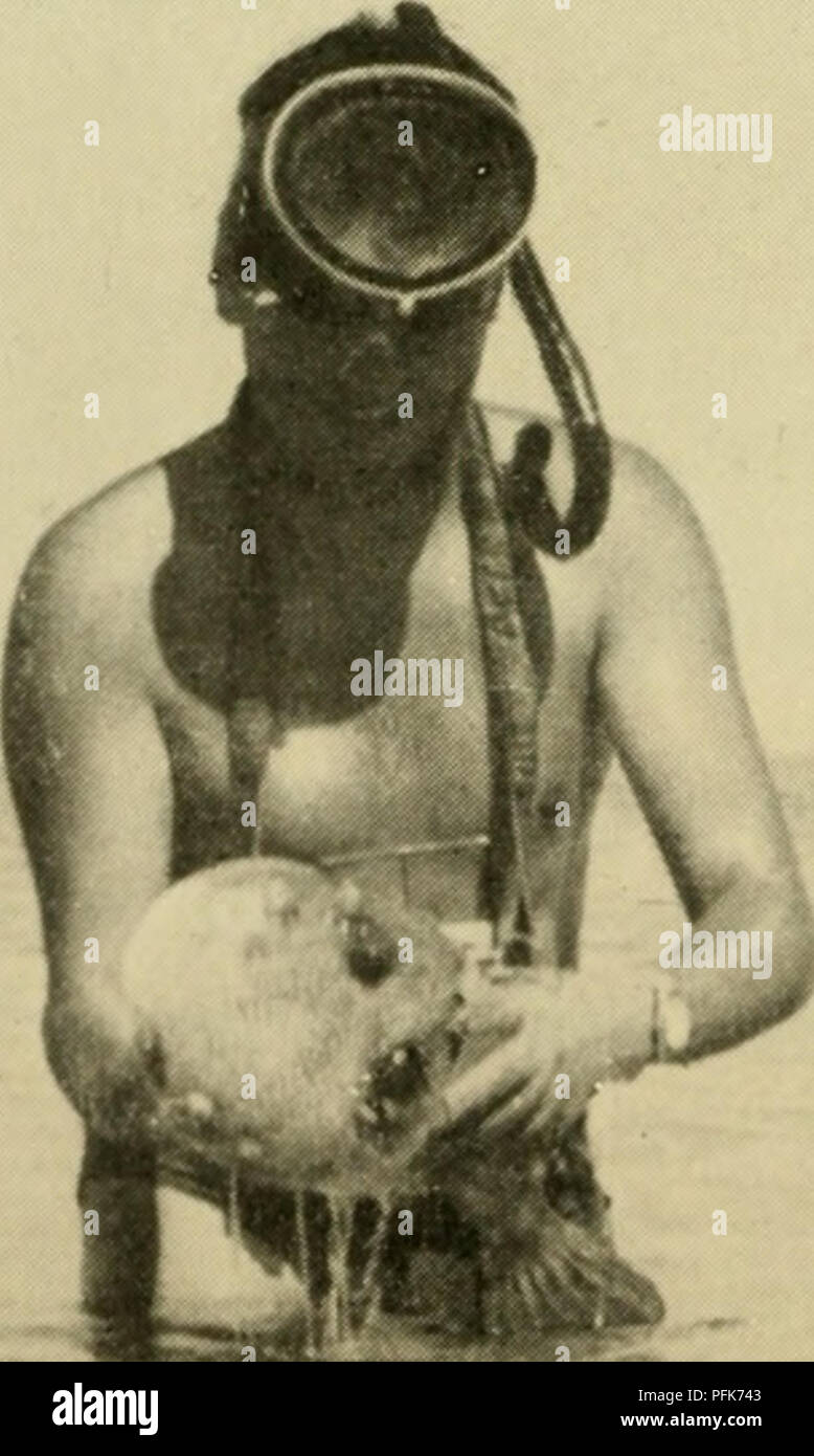 """. Dahlak: with the Italian National Underwater Expedition in the Red Sea. Spedizione nazionale subnequen in Mar Rosso, 1952-1953; Marine biology -- Red Sea; Deep diving. ,*ì^"""""""" ^""""â¢â¢ilgjljgw^iN^^i^^tìB^^^HBH â ^^^ *i' i m Â« -^i^ mr . .Mrii m %^ m^^m 'â¢' ig P â¢^^^^7 pSr """"""""â ^=^^^1^ -. â * ; ^^^^^^^^K"""": Y% ^^Wl^p::: %s ^^T^^ ' .--""""-^-v ' ^ 1 :'^^^^HHp^v i;;à r^^ i- f '^H^^^^^l ^^ > i ^^^KT^ """"""""^""""""""""""""""' -^-â : j::^^?lÂ«'""""gy