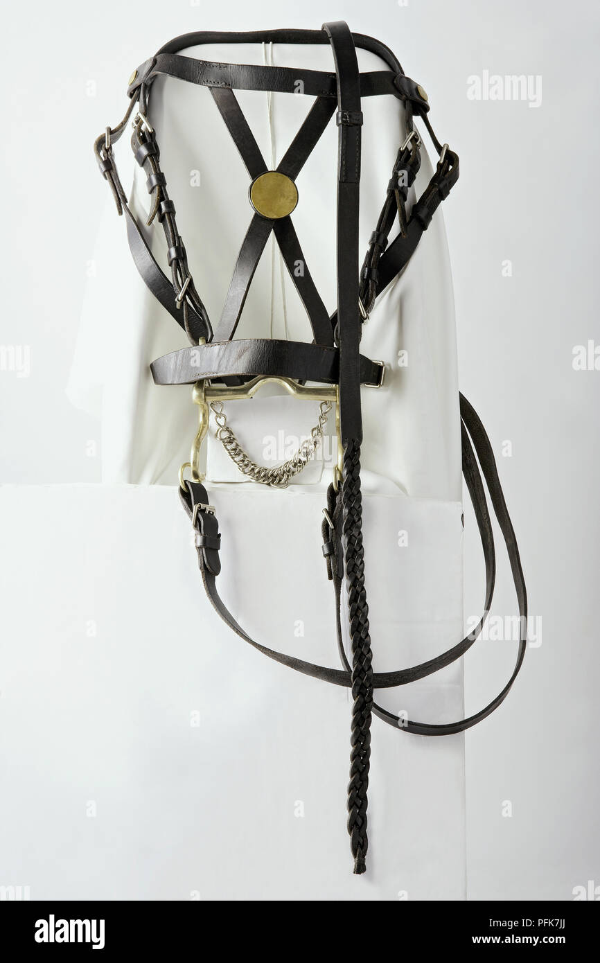 Bridle as used by French cavalry during Napoleonic Wars - Stock Image