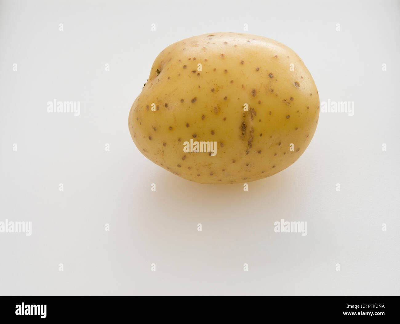 Potato 'Vivaldi', close-up - Stock Image