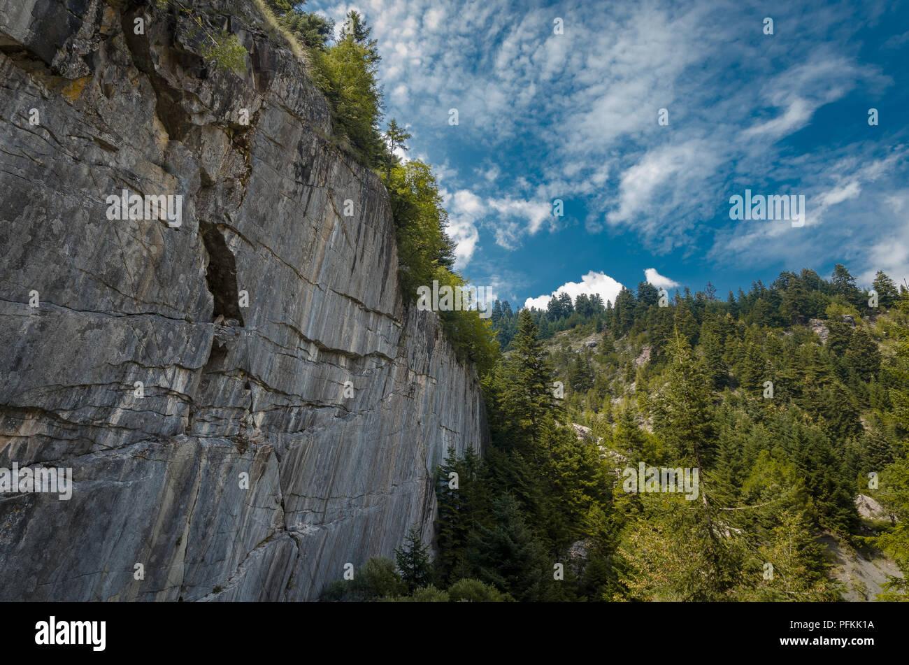 Nature Wallpaper - Stock Image