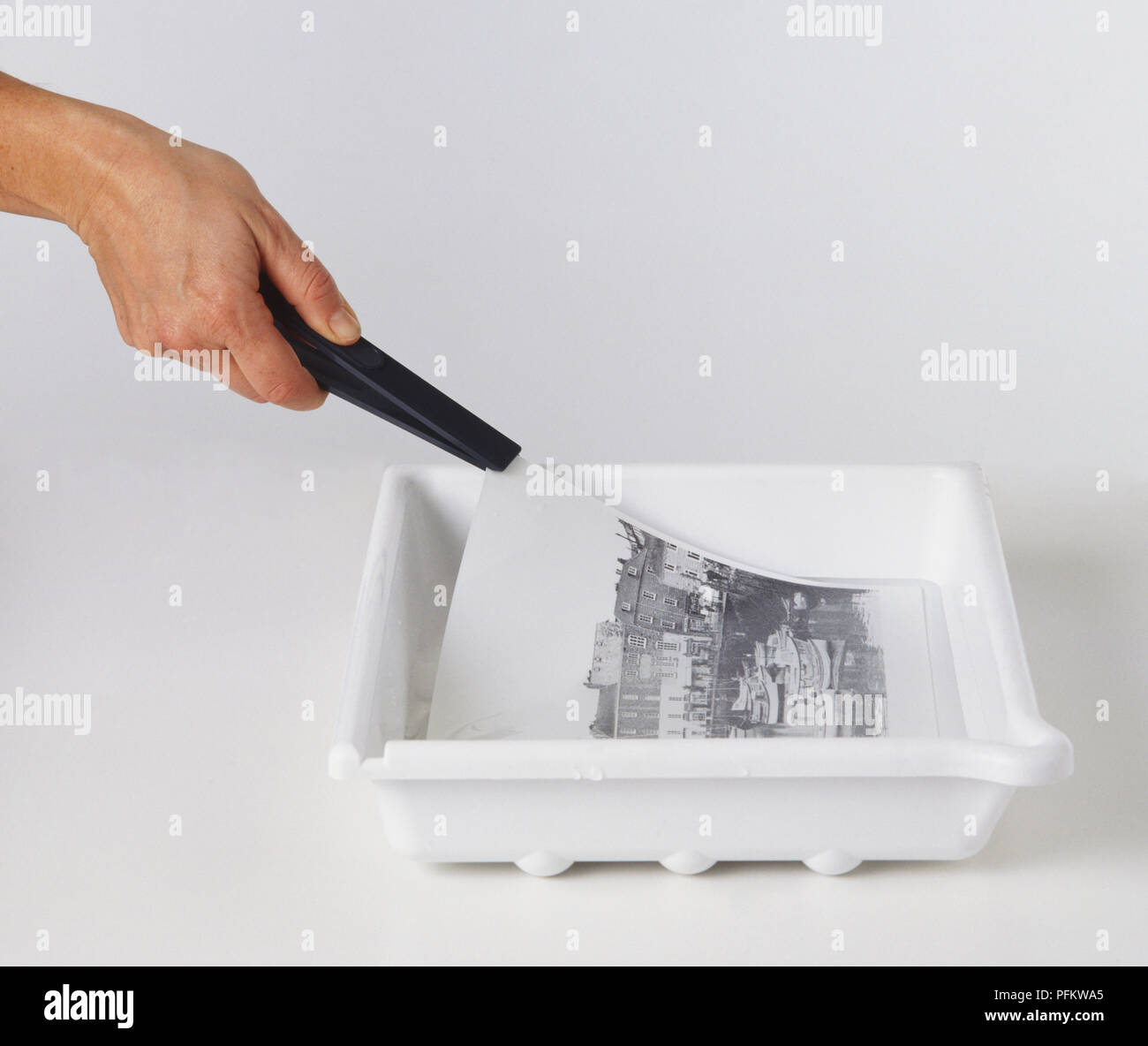 Black and white photographic print being pulled out bath of developer solution with plastic tongs, side view. - Stock Image