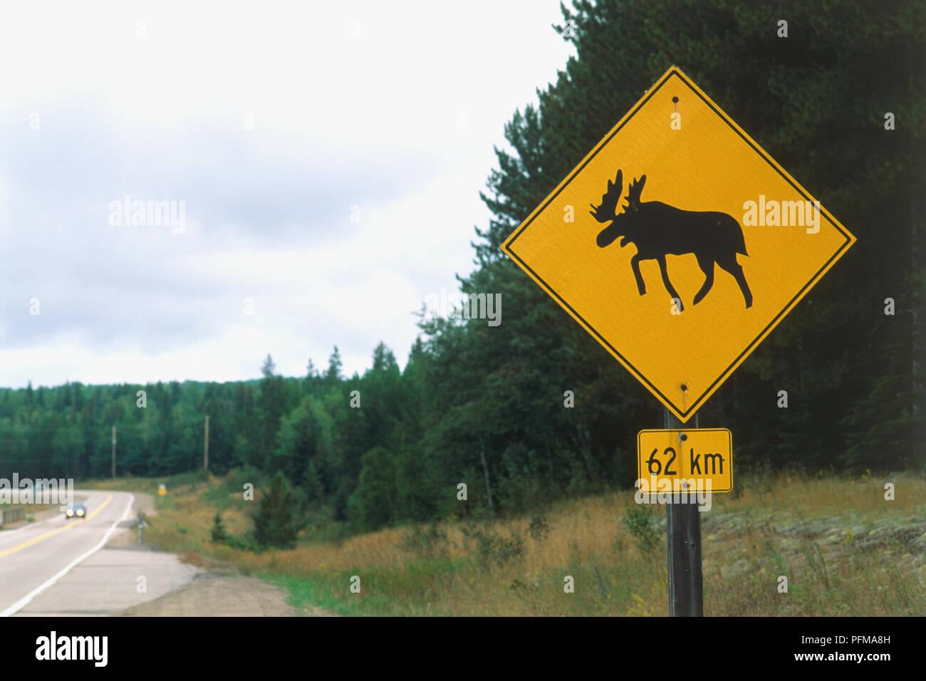 moose crossing signs stock photos moose crossing signs stock