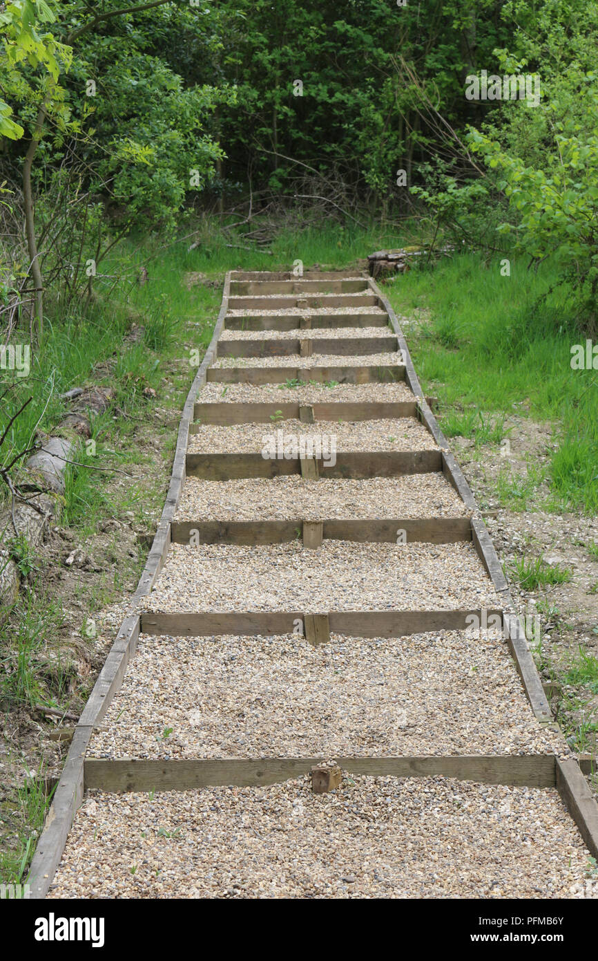 New footpath steps made from wooden boards for the risers and sides and back filled with gravel surrounded by vegetation with trees in the background. - Stock Image