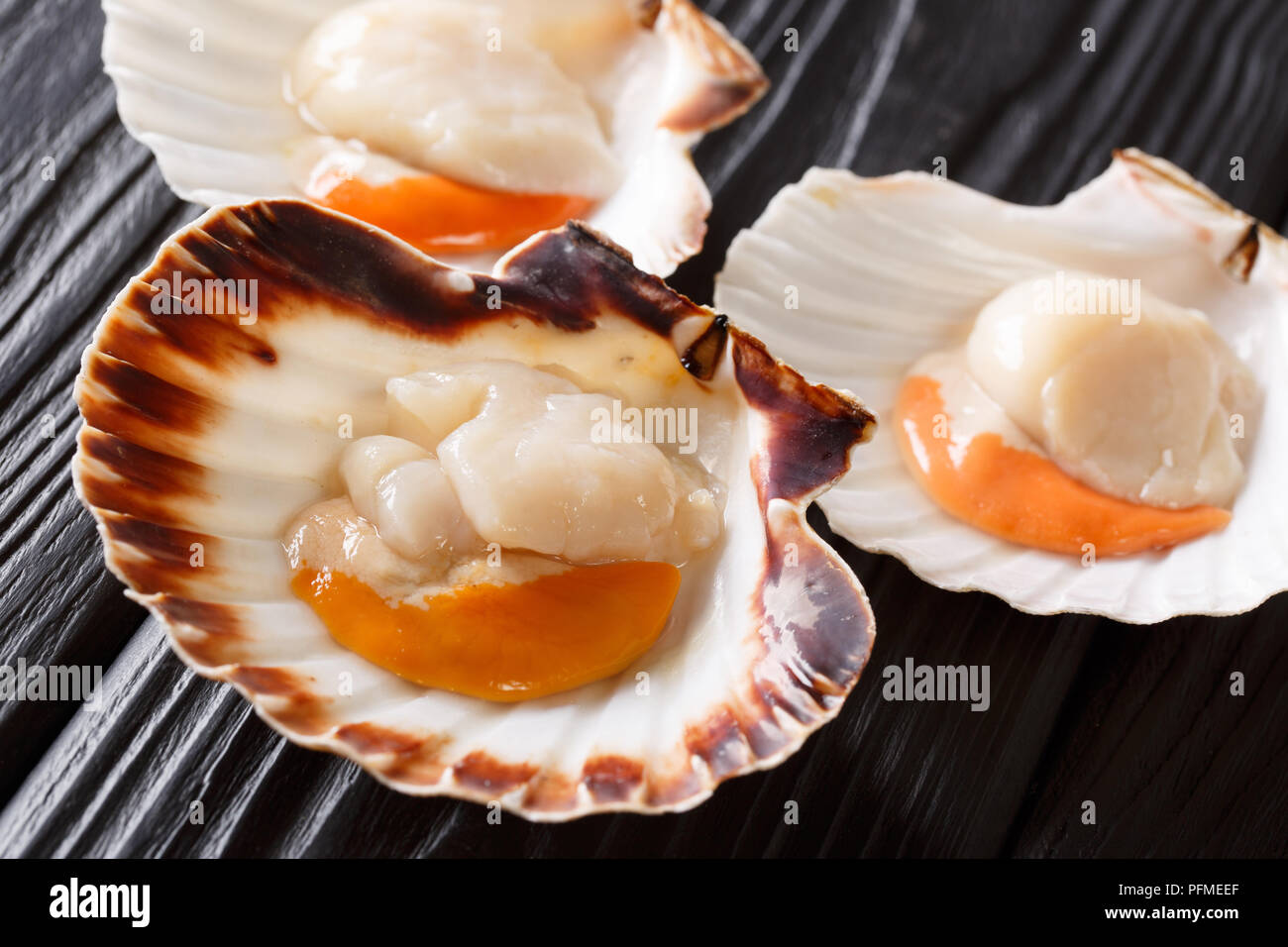 Seafood background with fresh scallops in white and brown shells. Seafood delicacies. horizontal format - Stock Image