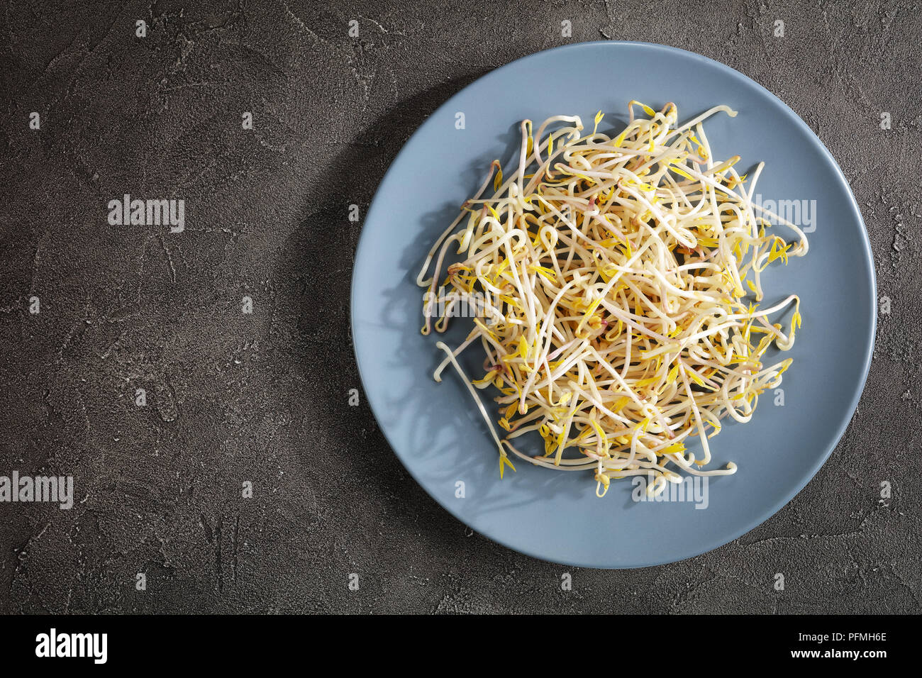 Fresh mung Bean Sprouts on plate on concrete background, major ingredient of asian cuisine, view form above - Stock Image