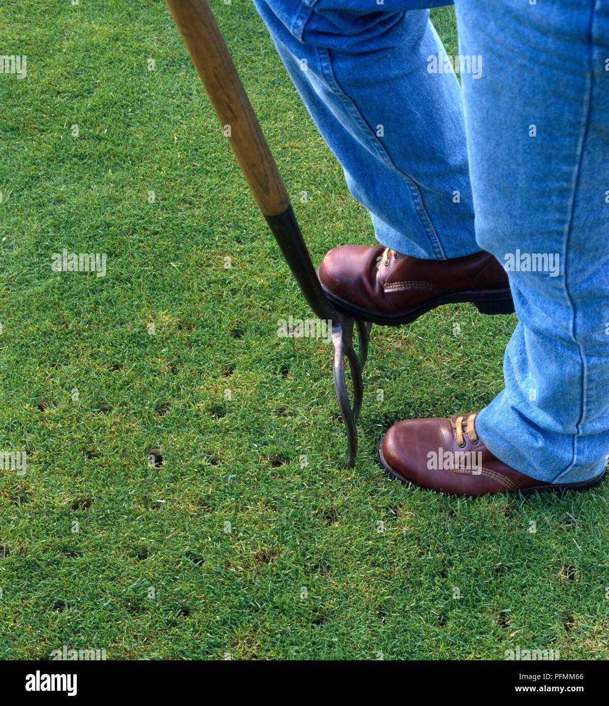 Can I Aerate Lawn With Garden Fork Fasci Garden