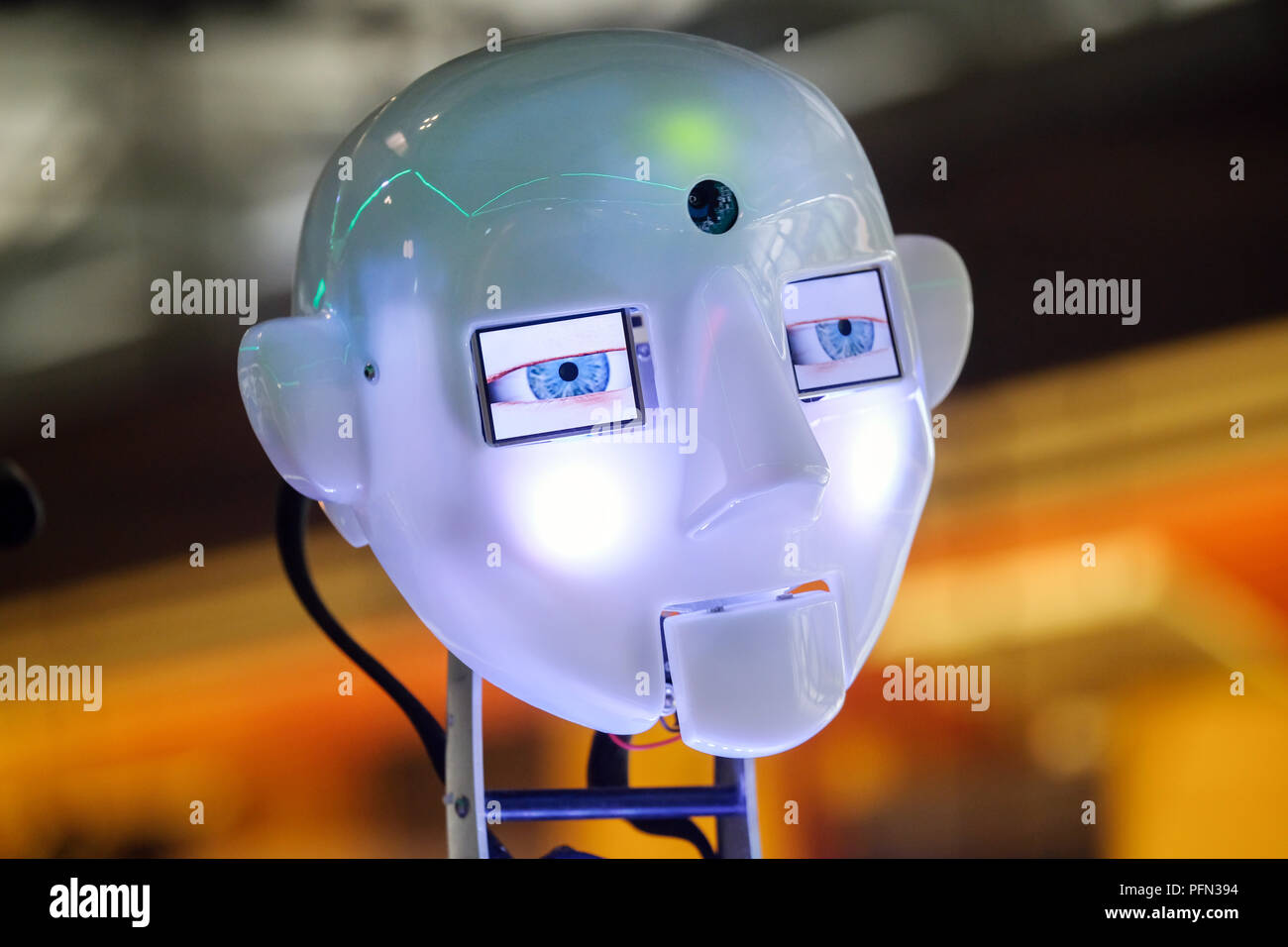 Head of a humanoid speaking, singing and dancing robot with artificial intelligence at the Heinz Nixdorf MuseumsForum (HNF) in Paderborn, Germany - Stock Image