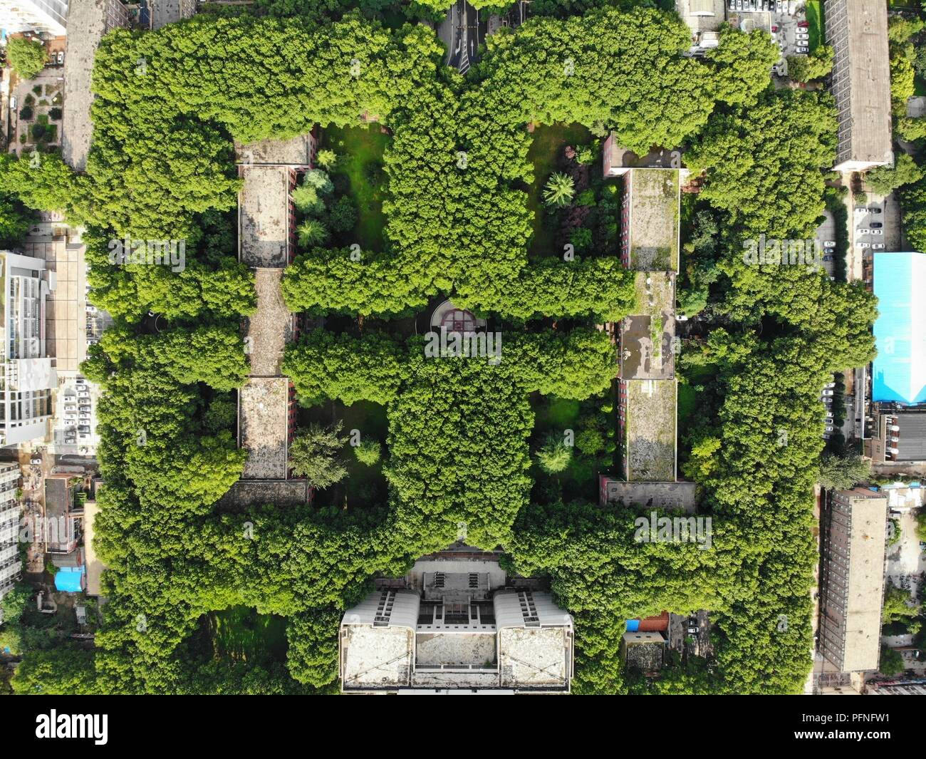 Zhengzhou China 22nd Aug 2018 The Home Wiring Green Building Central Labyrinth Of Trees Can Be Seen At University In Chinas Henan Province Credit Sipa Asia Zuma Wire Alamy Live