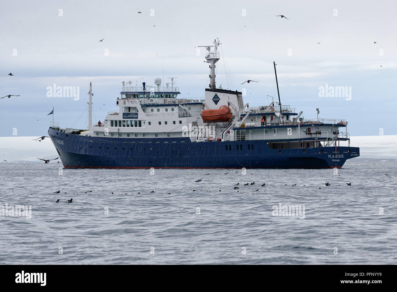 Cruise ship with birds near Alkefjellet, Hinlopenstretet, Svalbard, Norway Stock Photo