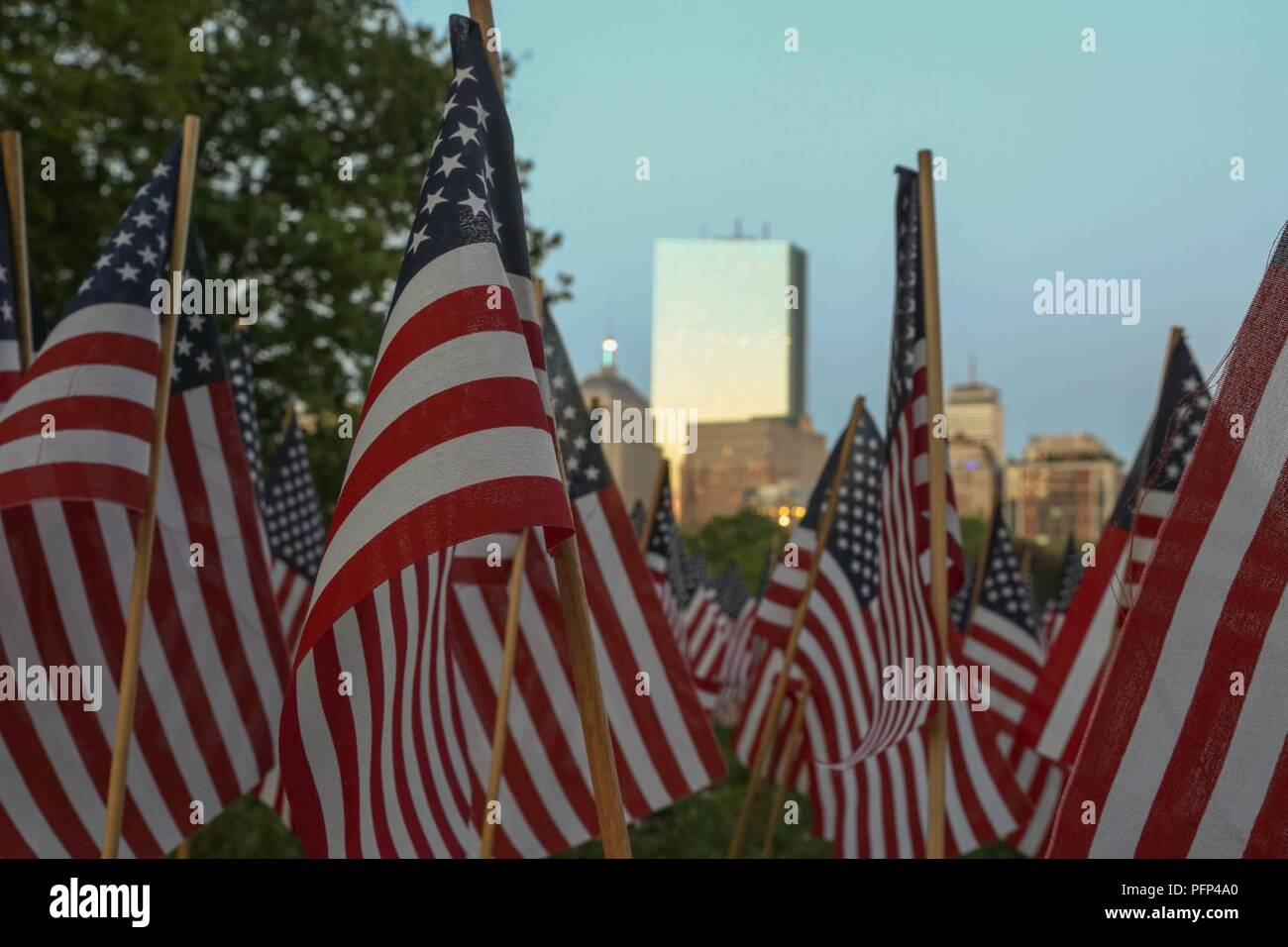 BOSTON – Flags planted in honor of the 37,268 service men and women