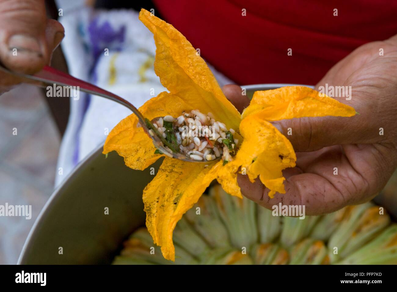 Greece, Dodecanese, Karpathos island, Finiki, using spoon to place rice stuffing in courgette flower, close-up Stock Photo