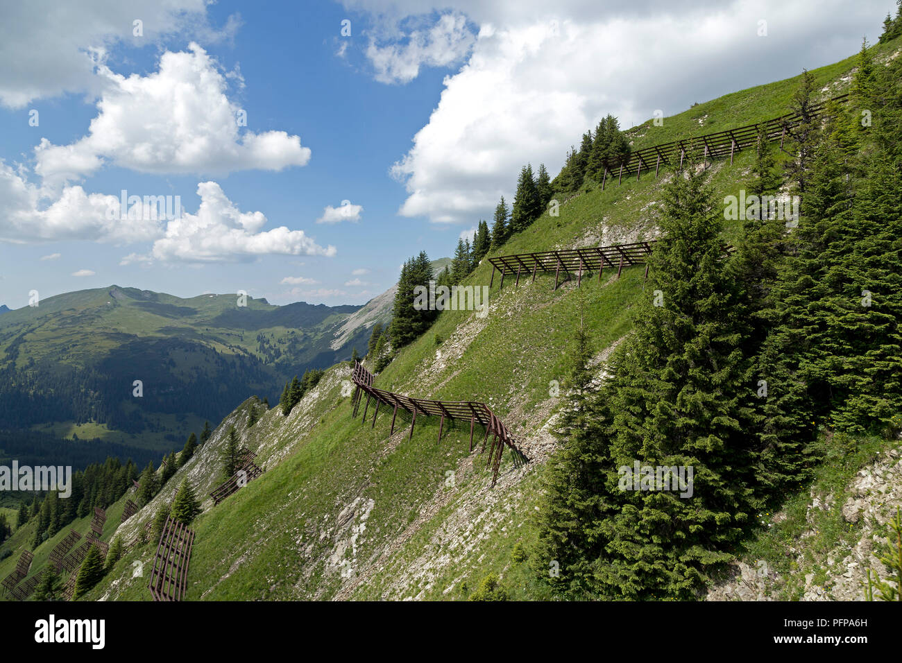 avalanche barriers, Walmendinger Horn, Mittelberg, little Walser valley, Austria - Stock Image