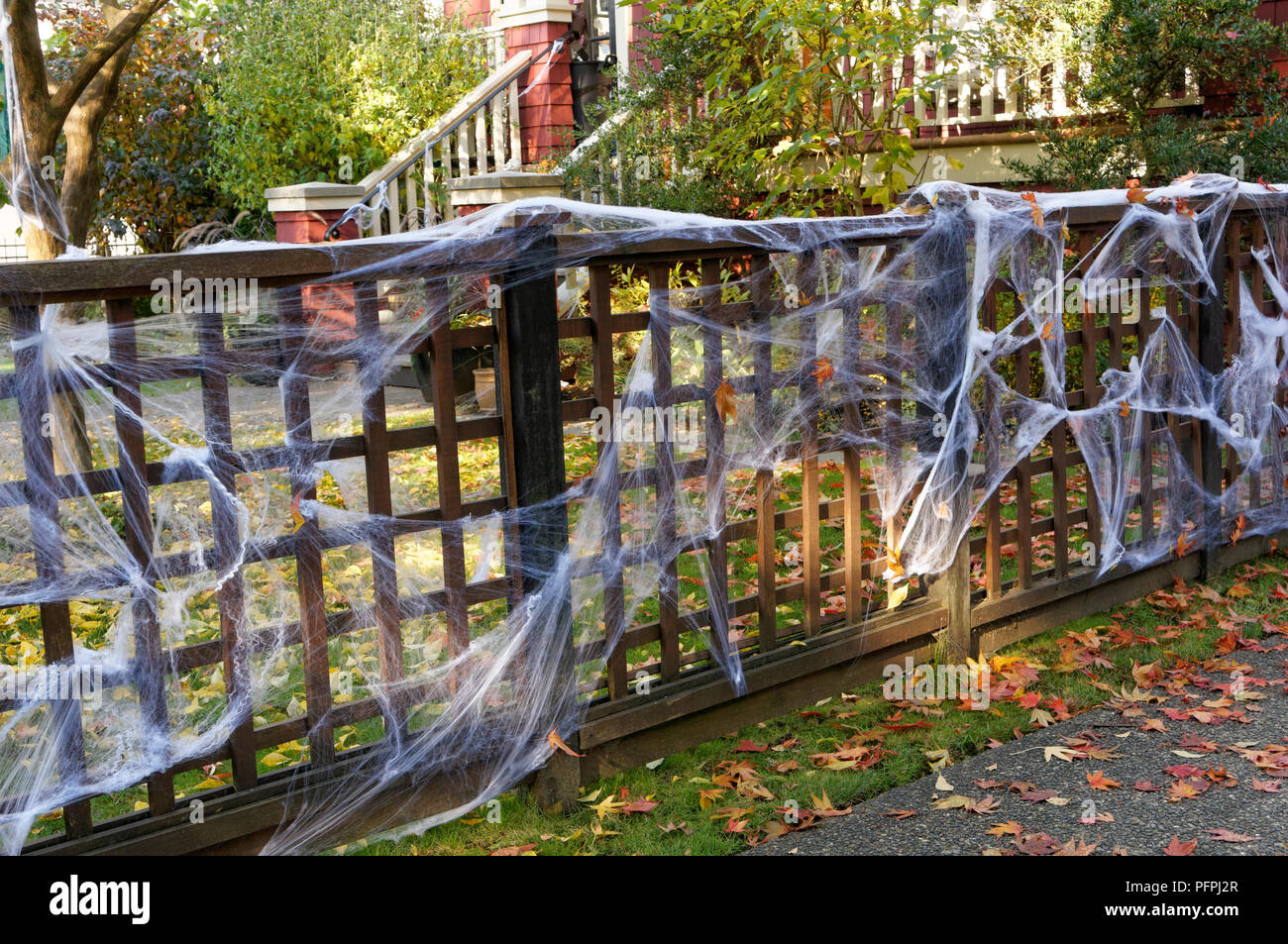 White Halloween spider webs decorating the fence of a house - Stock Image