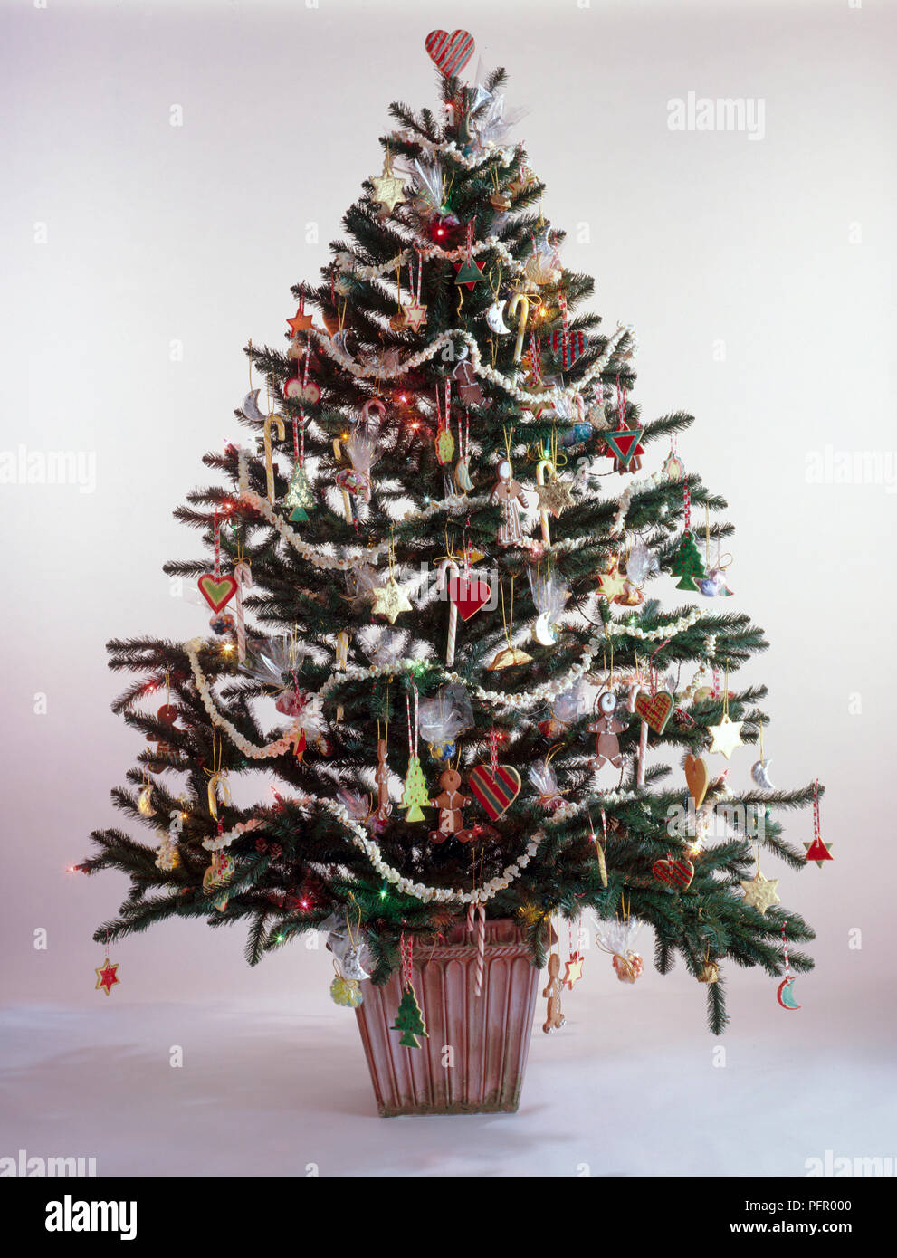 Christmas Tree With Natural Decorations Of Biscuits And Popcorn